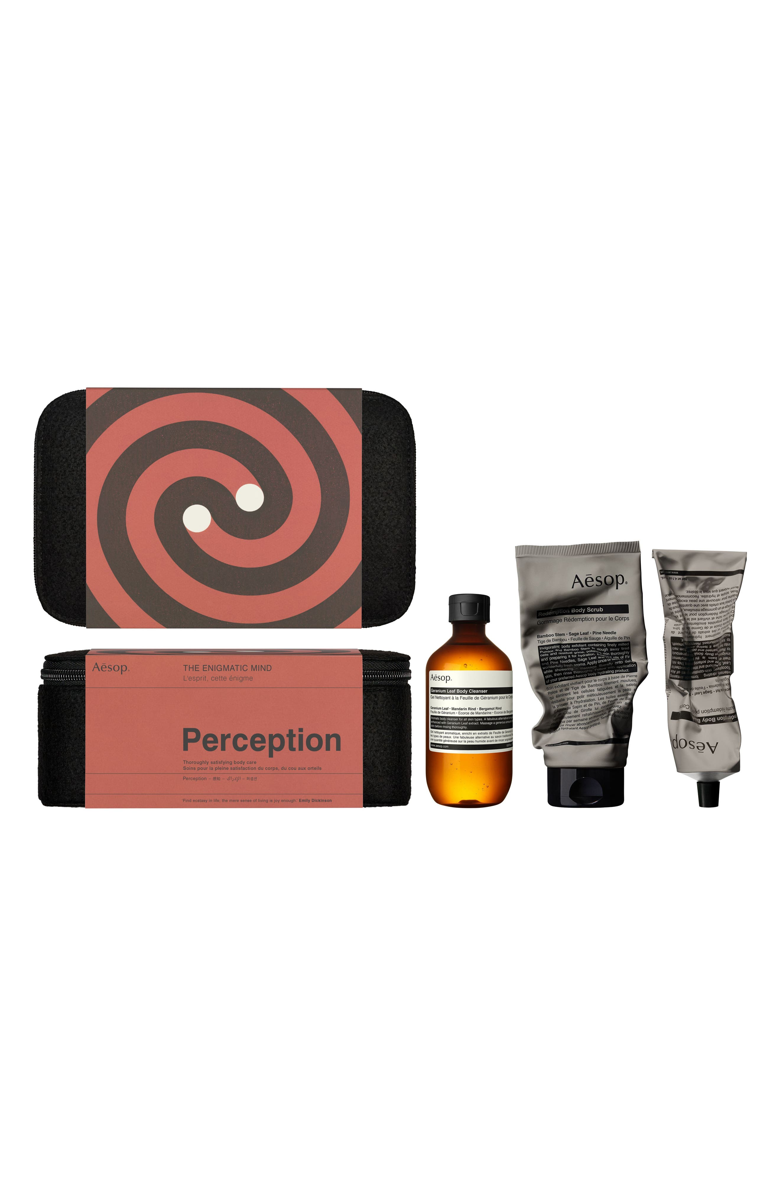The Enigmatic Mind Perception Kit,                         Main,                         color, 000