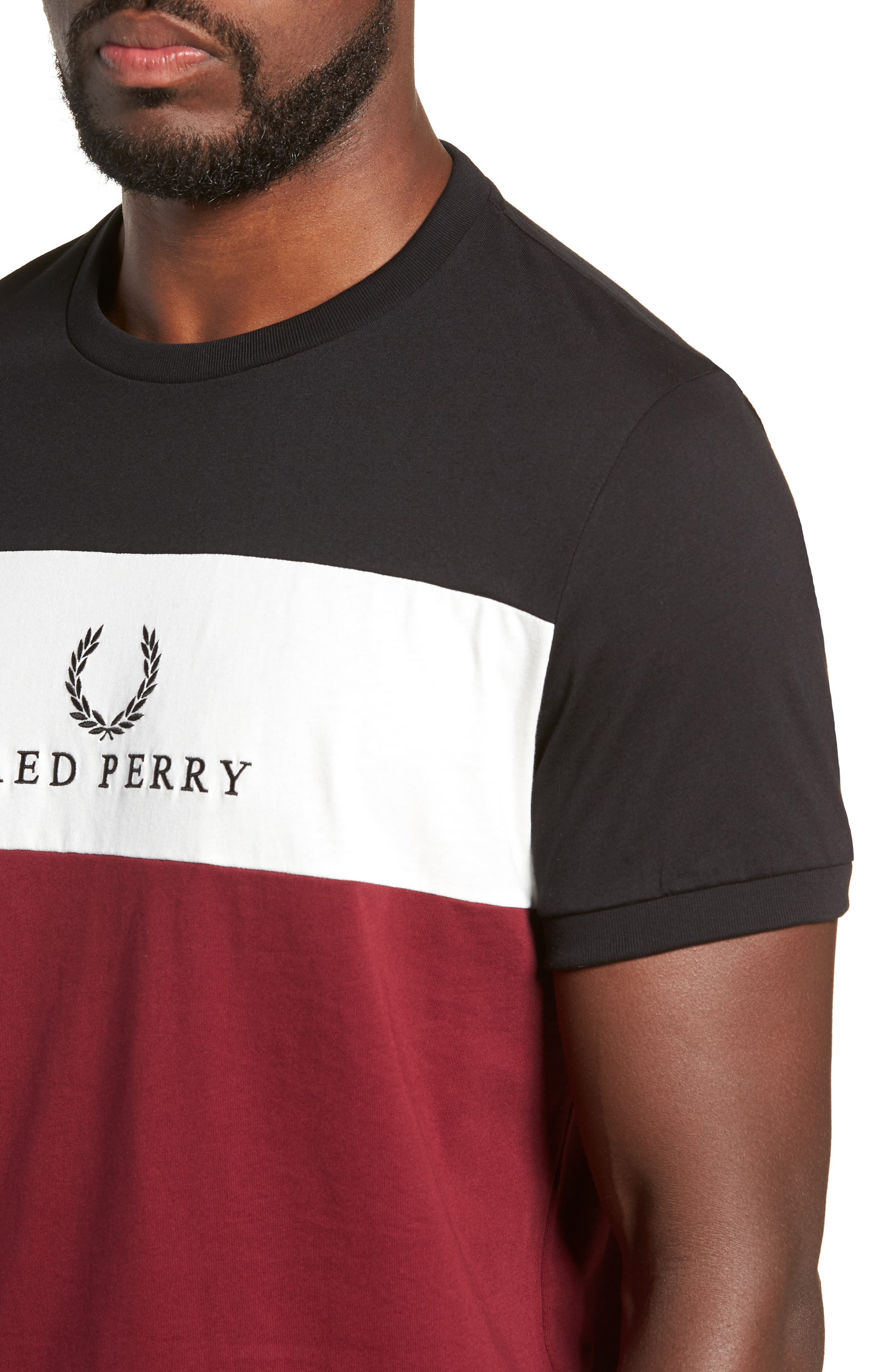 Embroidered Colorblock T-Shirt,                             Alternate thumbnail 4, color,                             TAWNY PORT