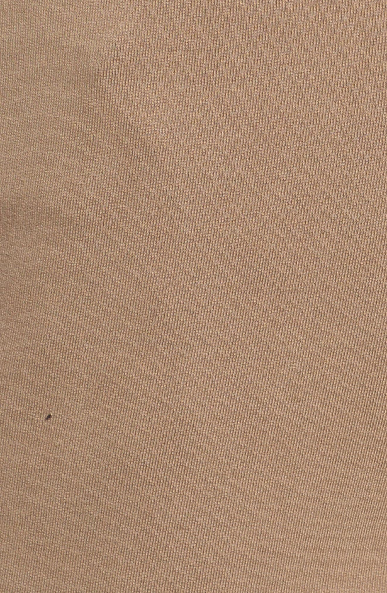 Carlton Knit Cargo Shorts,                             Alternate thumbnail 5, color,                             249