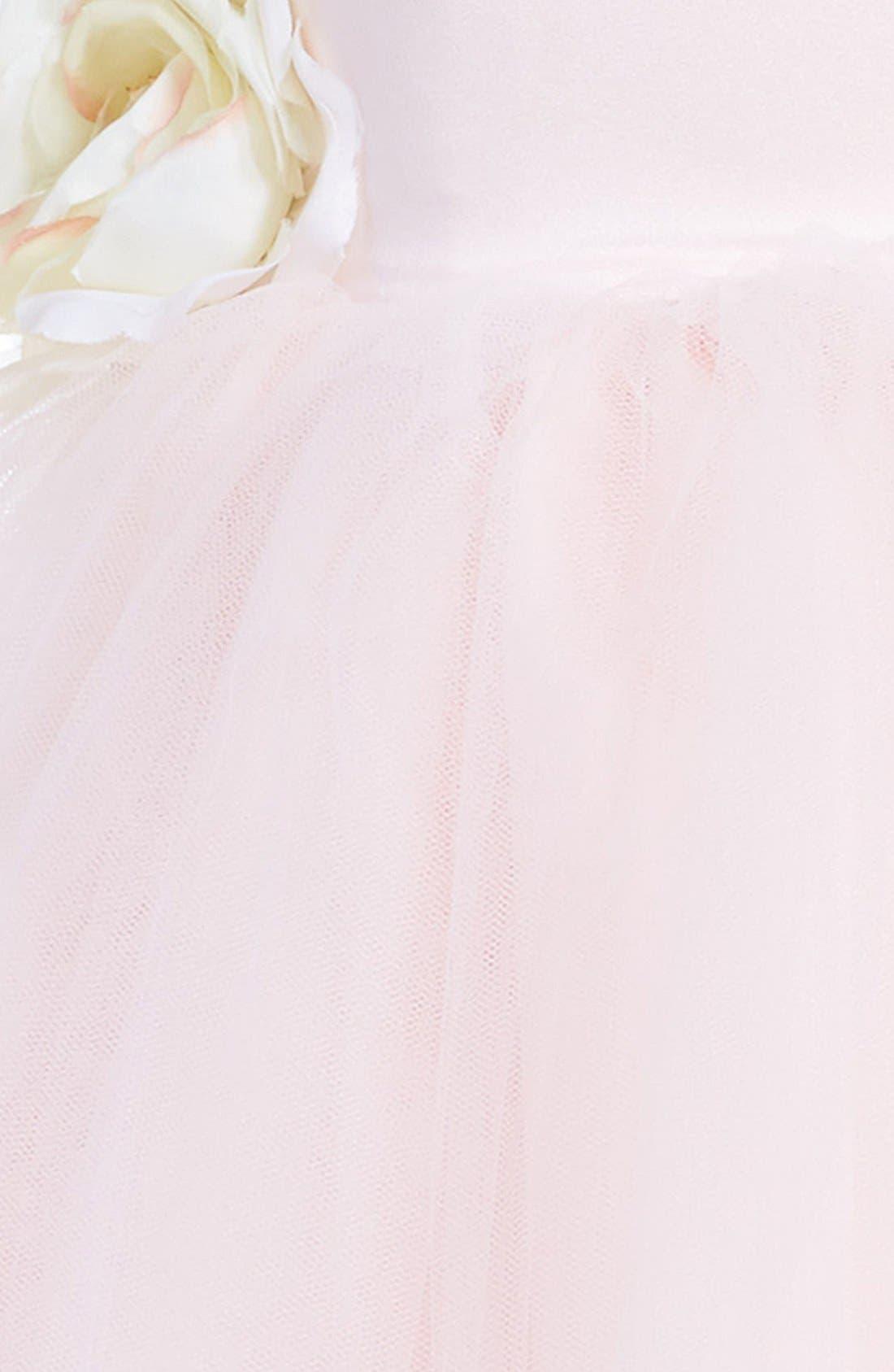 US ANGELS, Tulle Ballerina Dress, Alternate thumbnail 5, color, BLUSH PINK