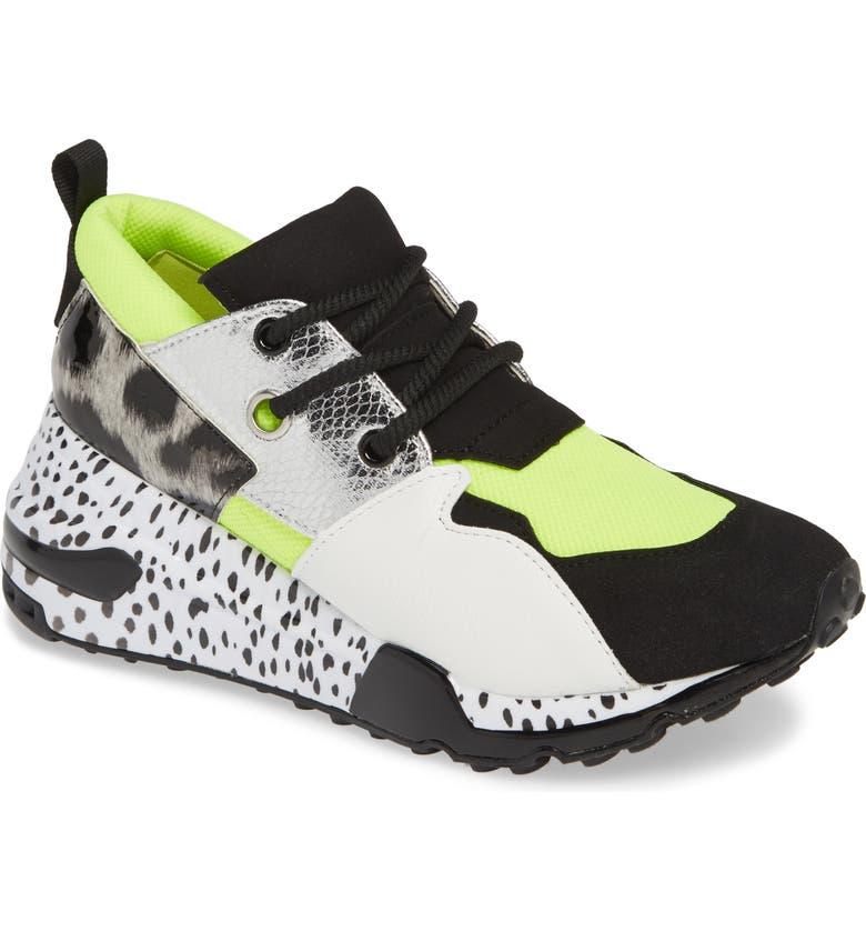 4818c8dbff3 Steve Madden Cliff Sneaker (Women)