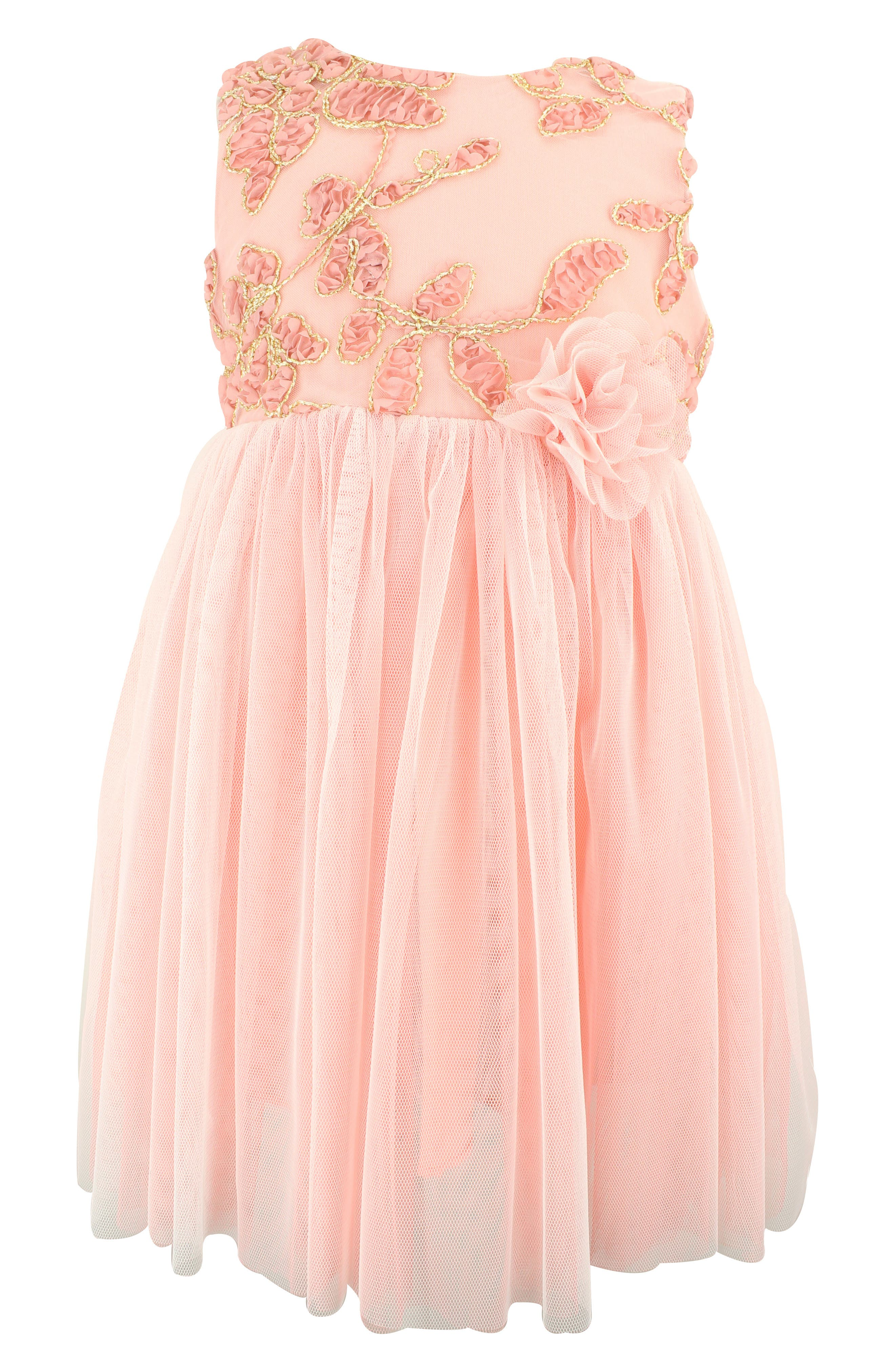 POPATU, Floral Embroidered Tulle Dress, Main thumbnail 1, color, DUSTY PINK