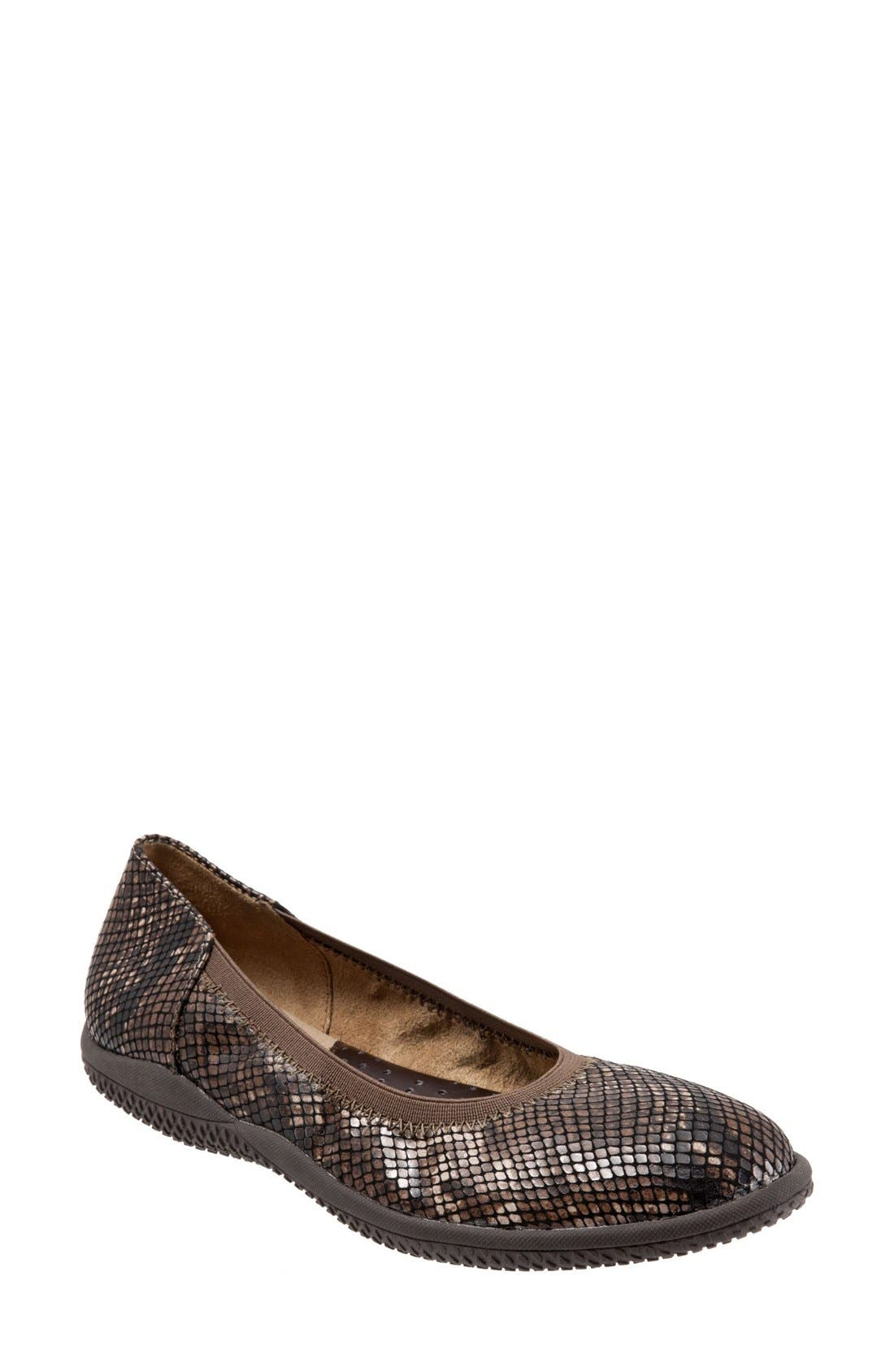 SOFTWALK<SUP>®</SUP>, 'Hampshire' Dot Perforated Ballet Flat, Main thumbnail 1, color, BROWN PYTHON PRINT LEATHER
