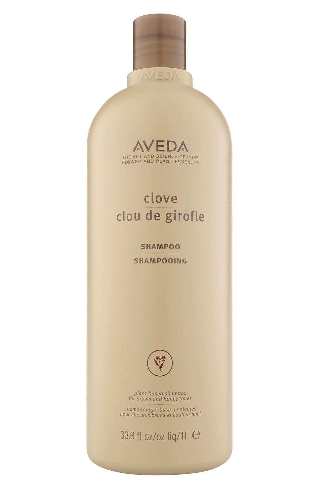 AVEDA Clove Shampoo, Main, color, NO COLOR