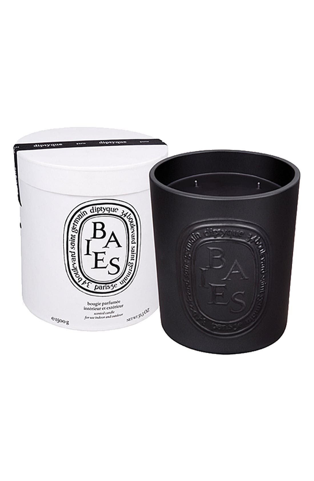 DIPTYQUE, 'Baies/Berries' Large Scented Candle, Main thumbnail 1, color, NO COLOR
