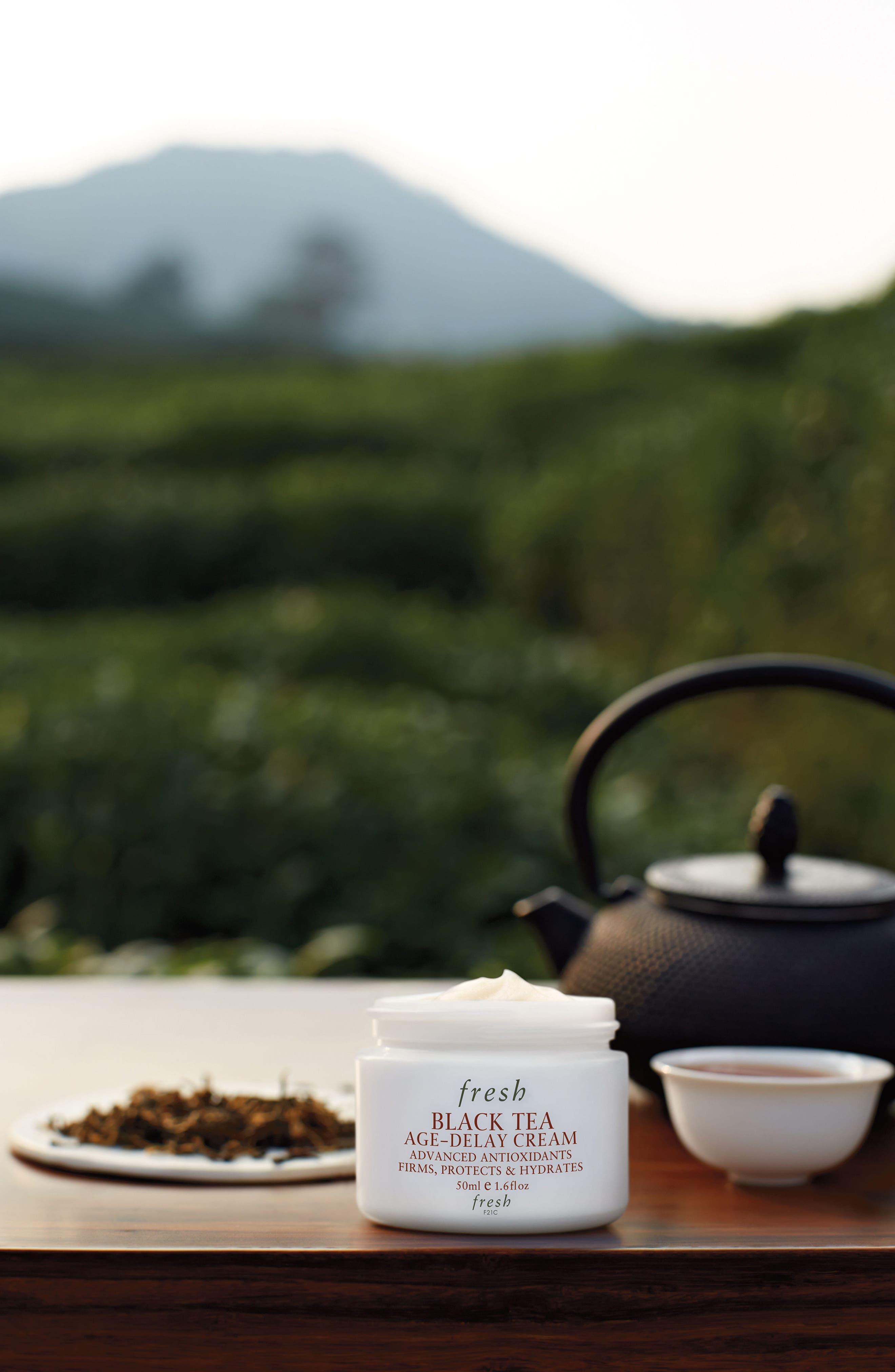 FRESH<SUP>®</SUP>, Black Tea Age-Delay Cream, Alternate thumbnail 2, color, NO COLOR