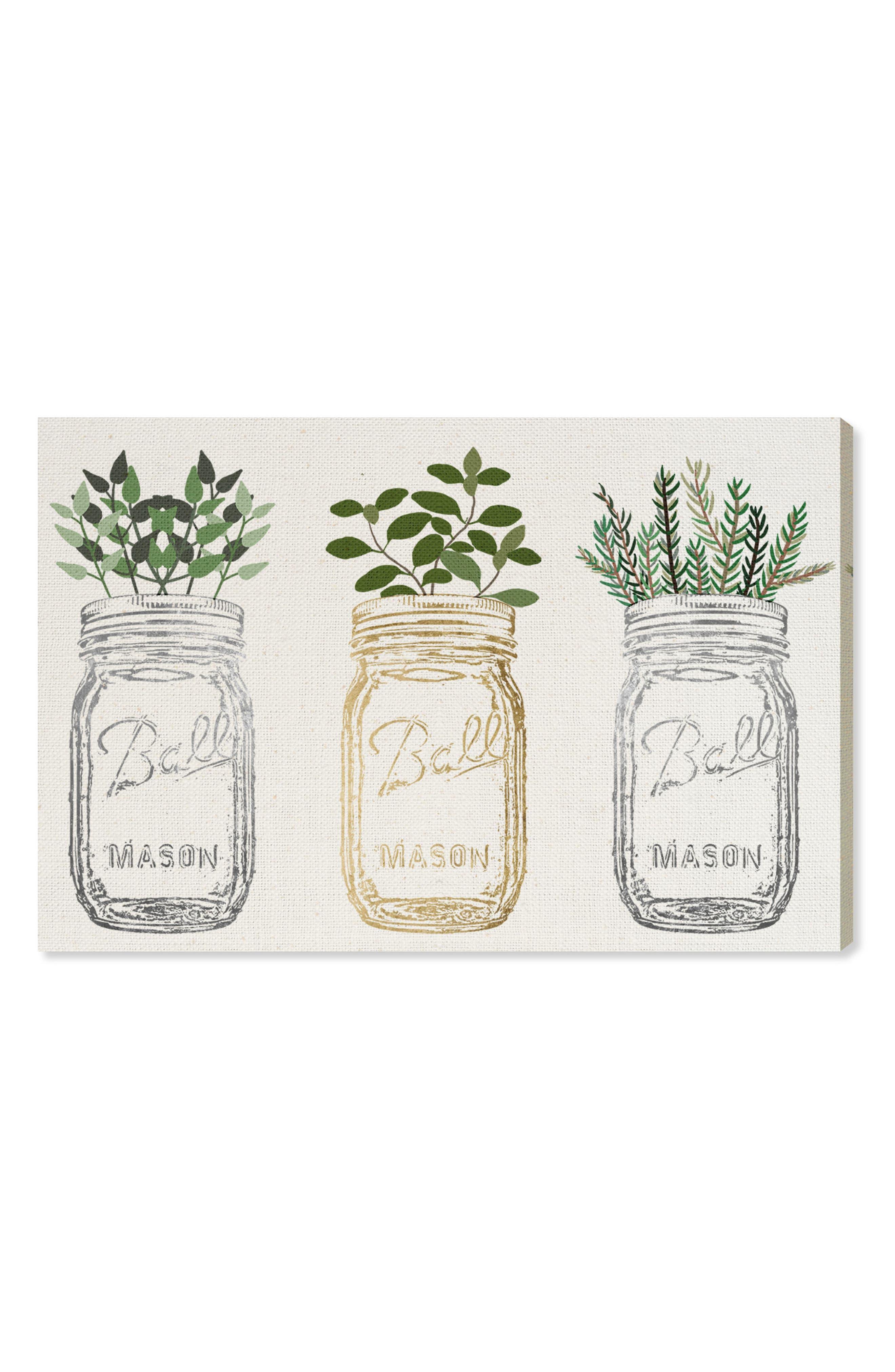 OLIVER GAL, Mason Jars & Plants Canvas Wall Art, Main thumbnail 1, color, WHITE