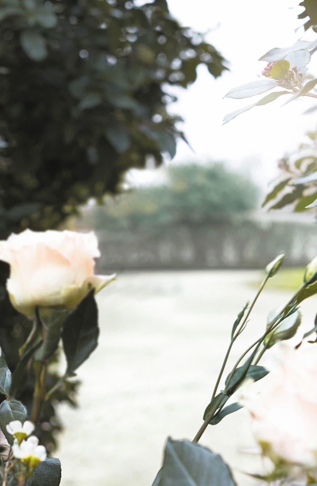 MAISON MARGIELA, Replica Promenade in the Gardens Fragrance, Alternate thumbnail 5, color, 000