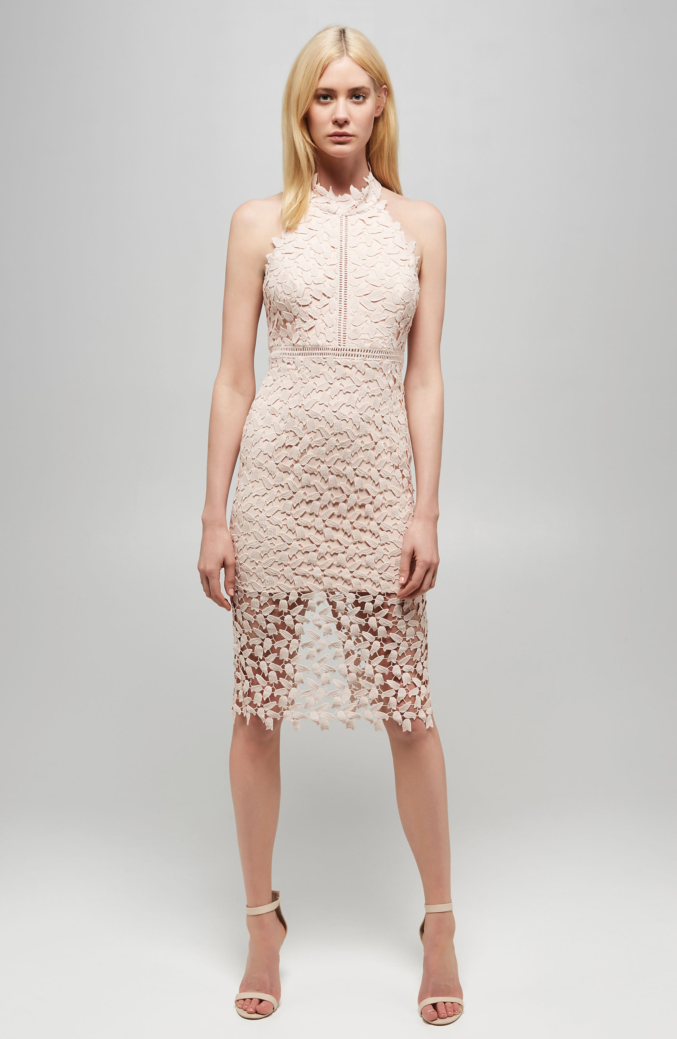BARDOT, Gemma Halter Lace Sheath Dress, Alternate thumbnail 8, color, PROSECCO