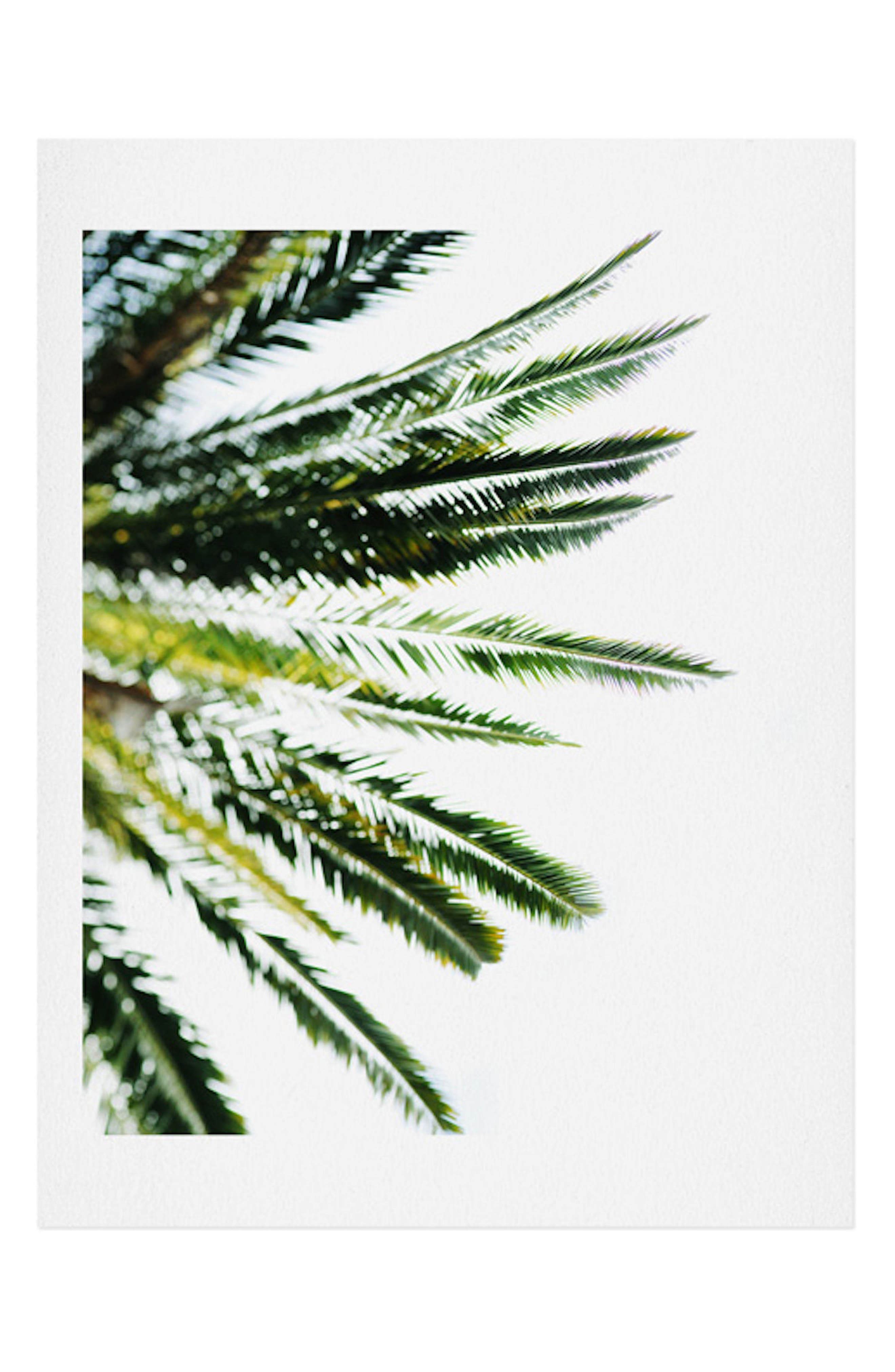 DENY DESIGNS Chelsea Victoria - Beverly Hills Palm Art Print, Main, color, GREEN