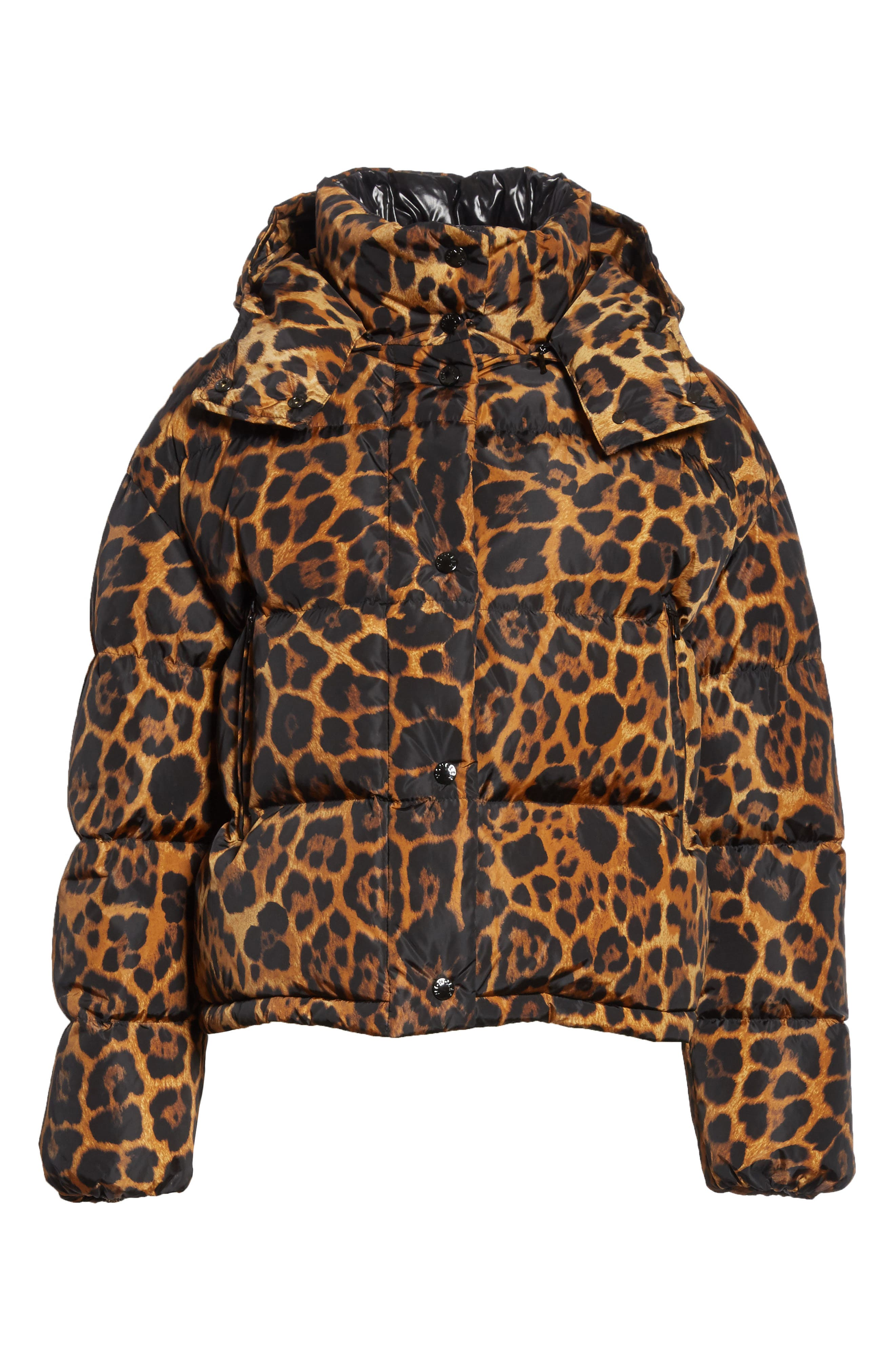 MONCLER, Caille Leopard Print Down Puffer Jacket, Alternate thumbnail 6, color, 240