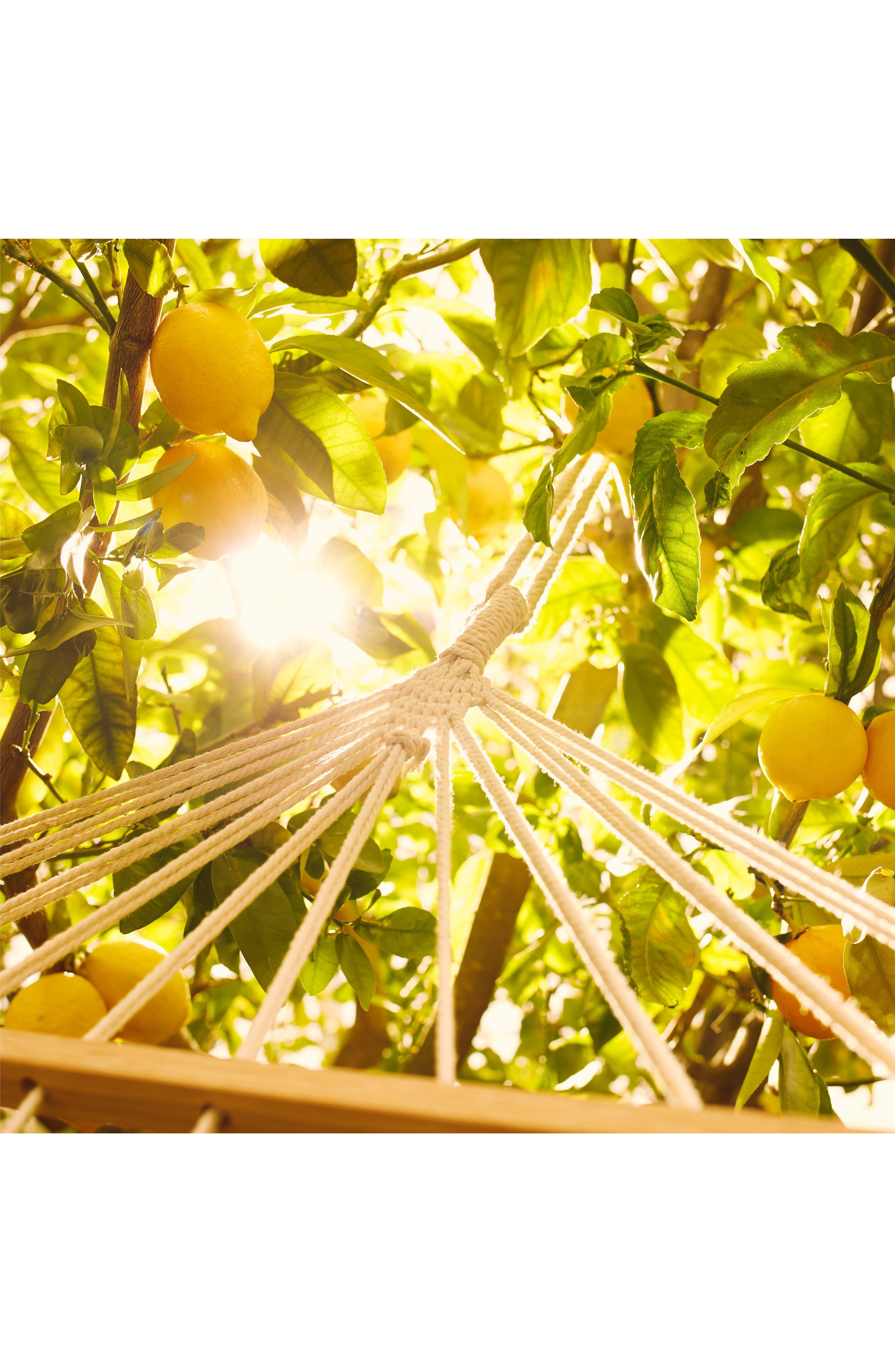 MAISON MARGIELA, Replica Under the Lemon Trees Fragrance, Alternate thumbnail 3, color, NO COLOR