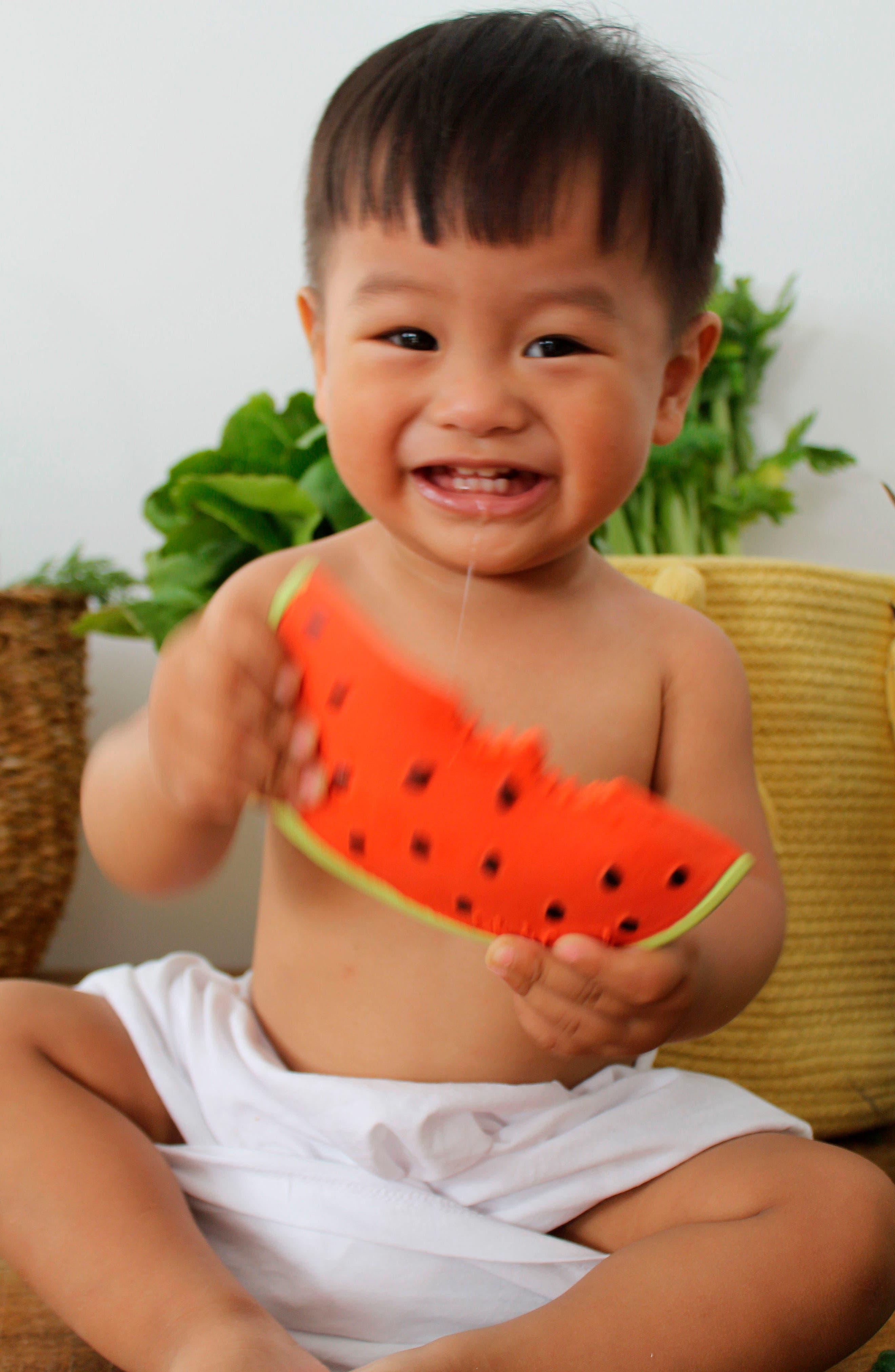 OLI & CAROL, Oli and Carol Wally the Watermelon Teething Toy, Alternate thumbnail 6, color, 600