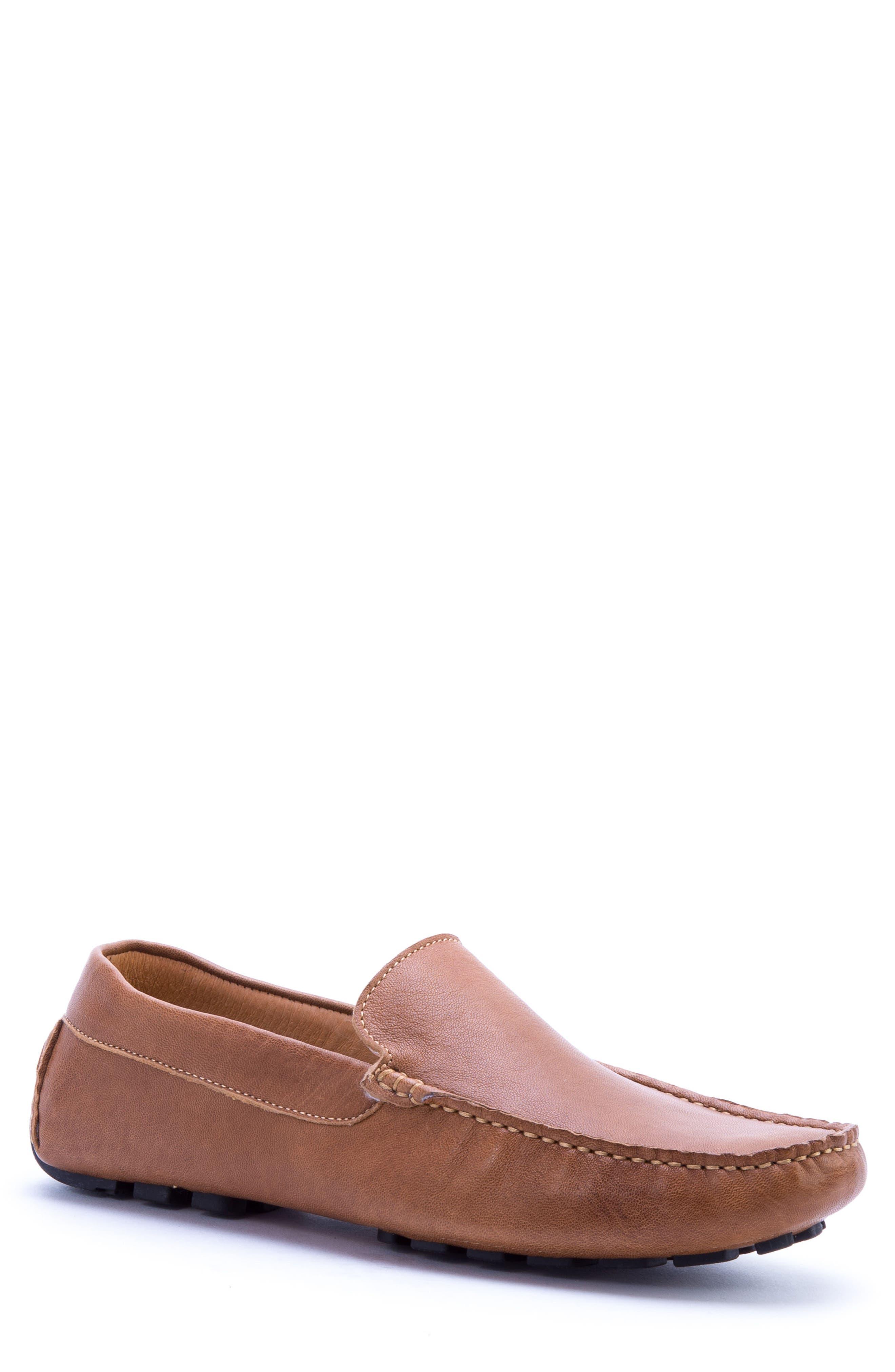 Zanzara Picasso 3 Moc Toe Driving Loafer, Brown