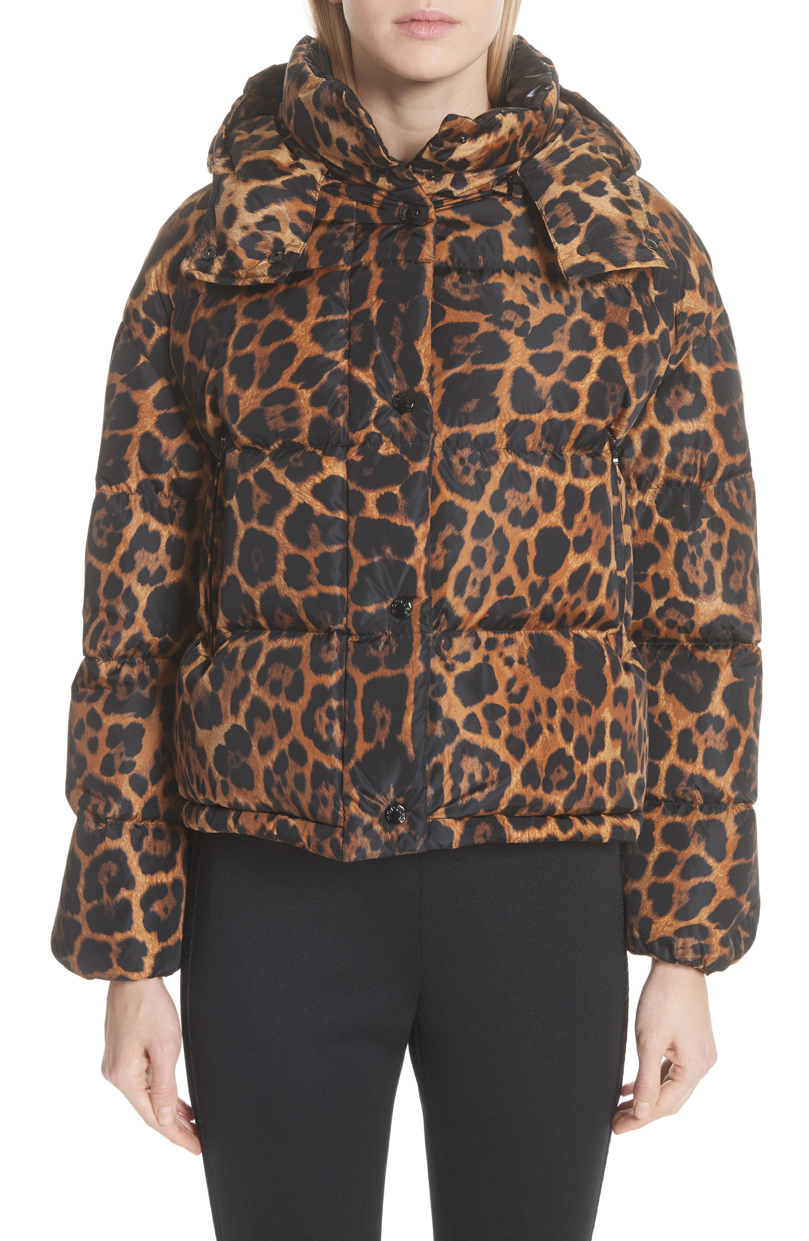 MONCLER, Caille Leopard Print Down Puffer Jacket, Main thumbnail 1, color, 240