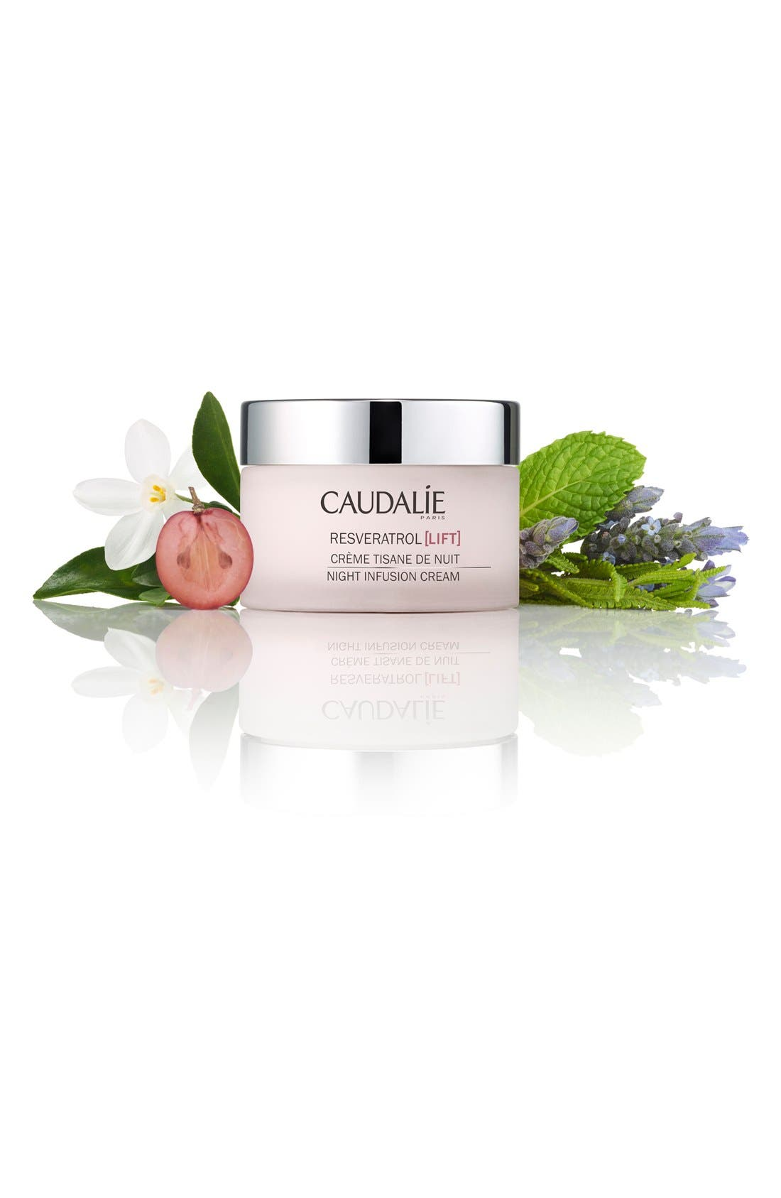CAUDALÍE, Resveratrol Lift Night Infusion Cream, Alternate thumbnail 3, color, NO COLOR