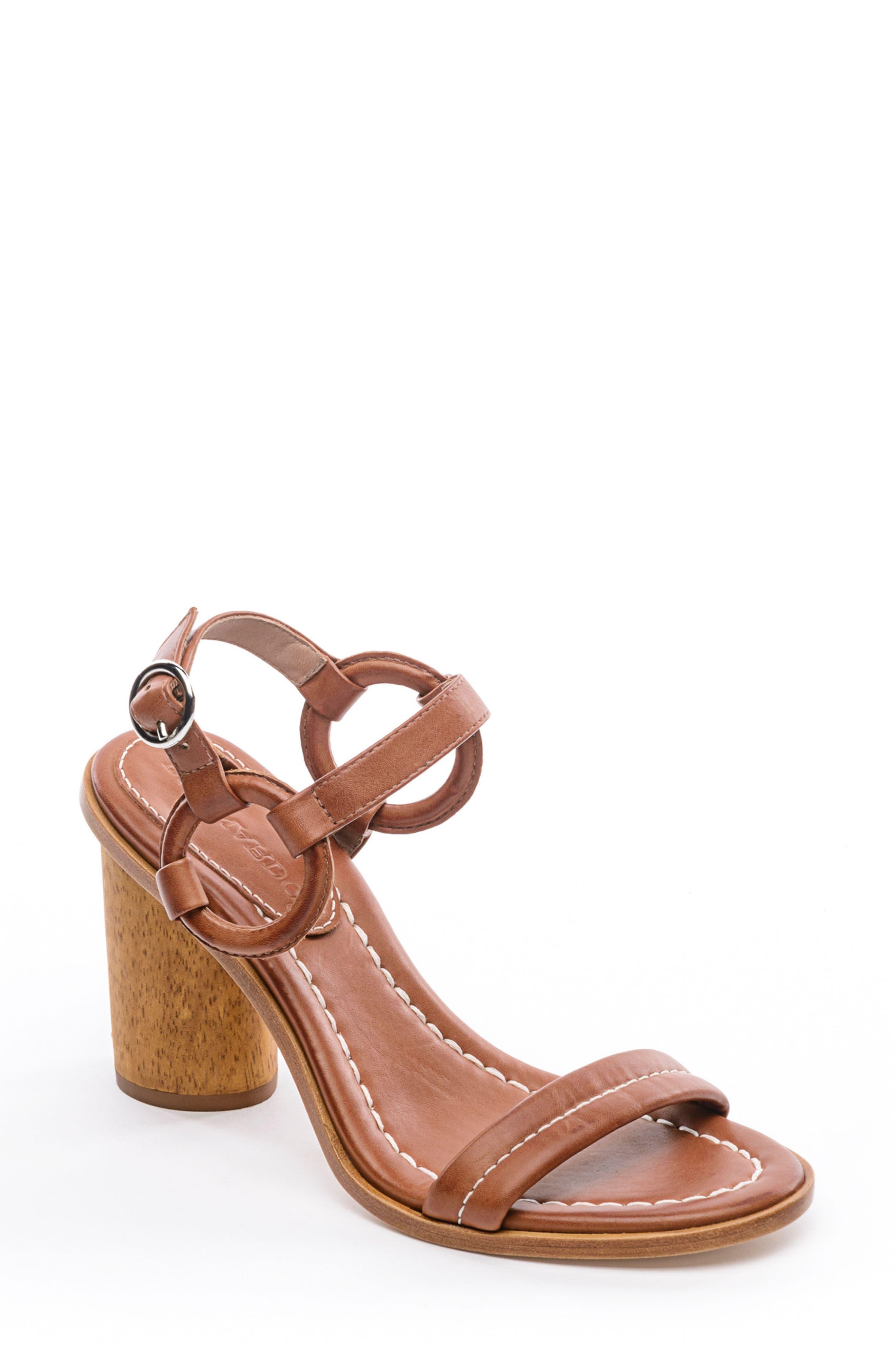 BERNARDO, Harlow Ankle Strap Sandal, Main thumbnail 1, color, LUGGAGE LEATHER