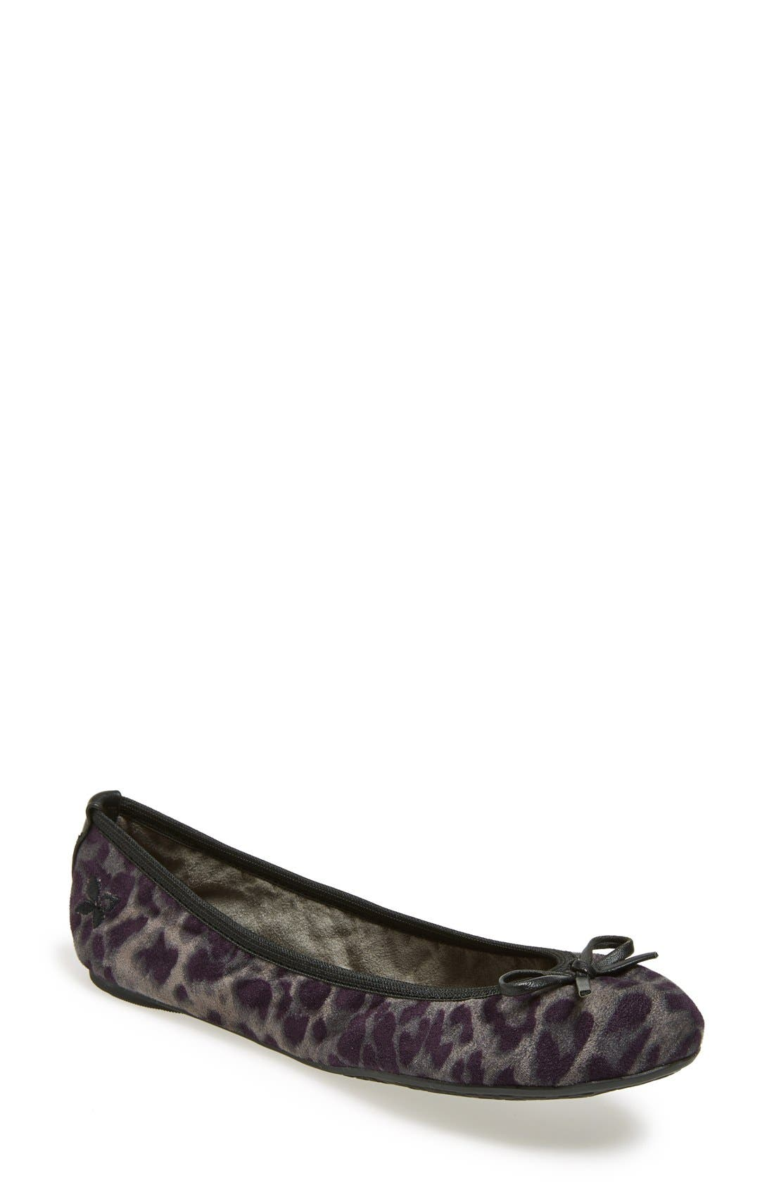 BUTTERFLY TWISTS, 'Cleo Leopard' Foldable Ballerina Flat, Main thumbnail 1, color, 020