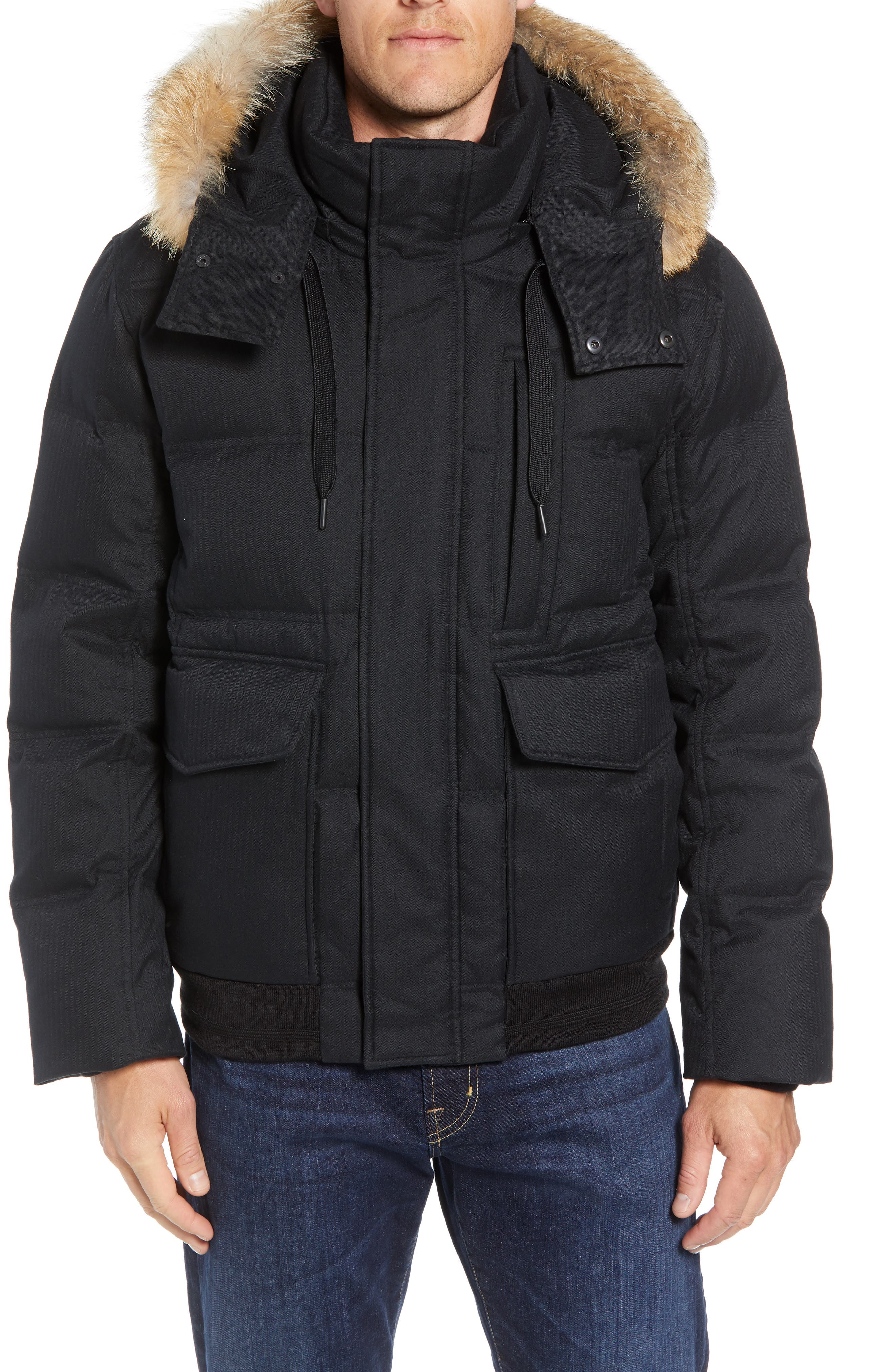 MARC NEW YORK Bohlen Down & Feather Bomber Jacket with Removable Genuine Coyote Fur Trim Hood, Main, color, BLACK