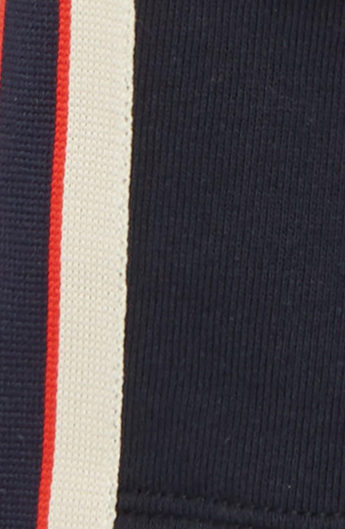 GUCCI, Logo Stripe Jogging Shorts, Alternate thumbnail 2, color, DAMASK