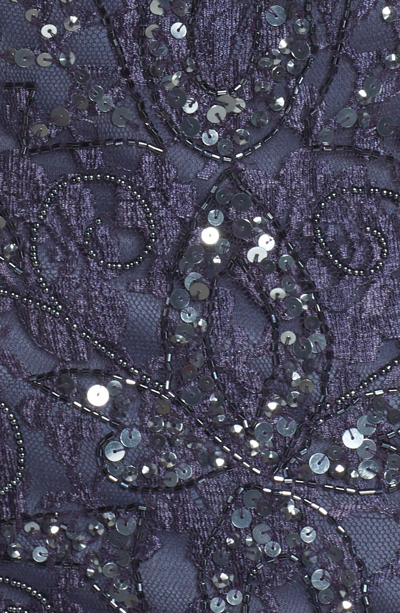 PISARRO NIGHTS, Beaded Lace Gown, Alternate thumbnail 6, color, 020