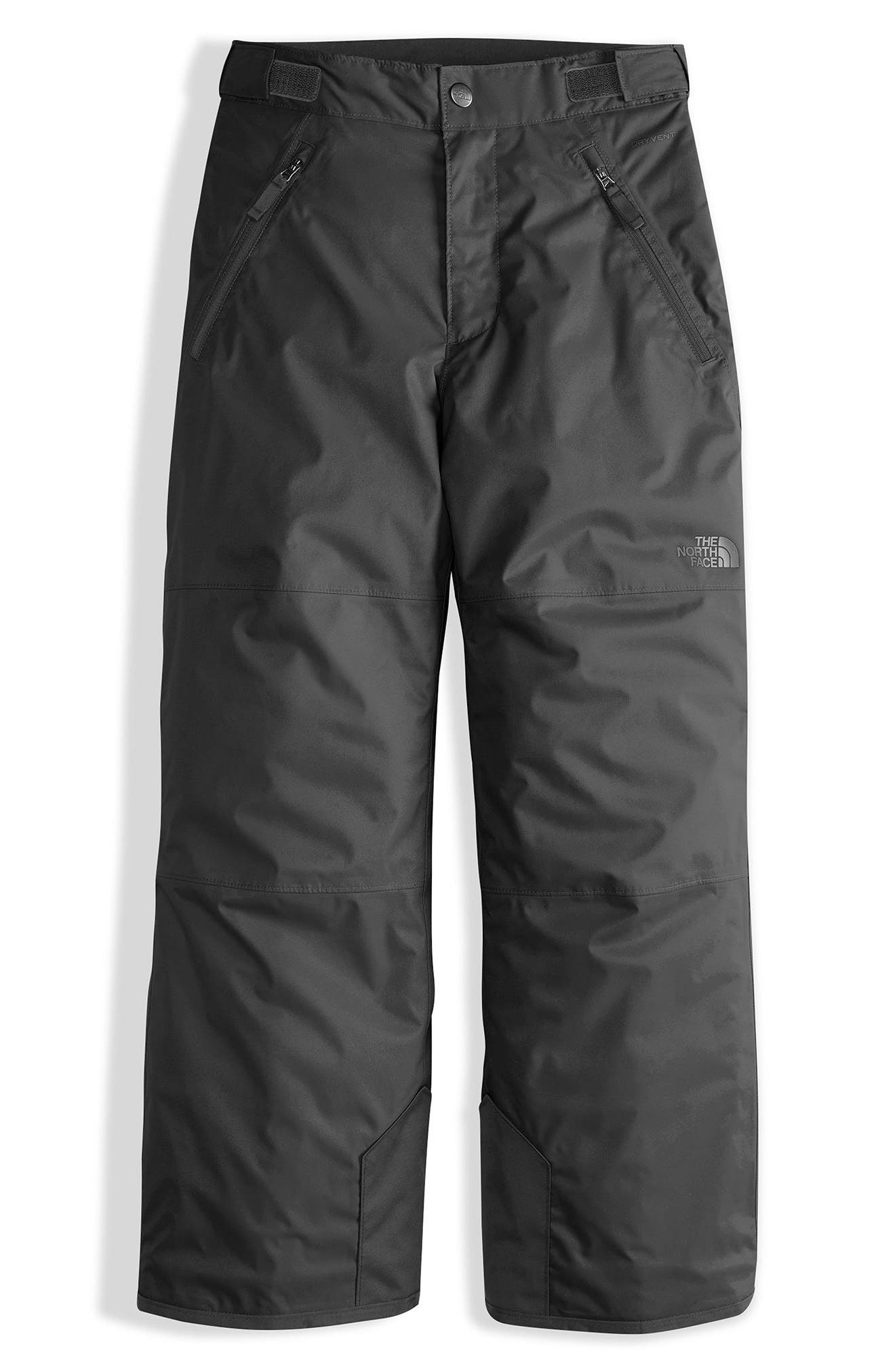 THE NORTH FACE, Freedom Waterproof Insulated Pants, Main thumbnail 1, color, 001