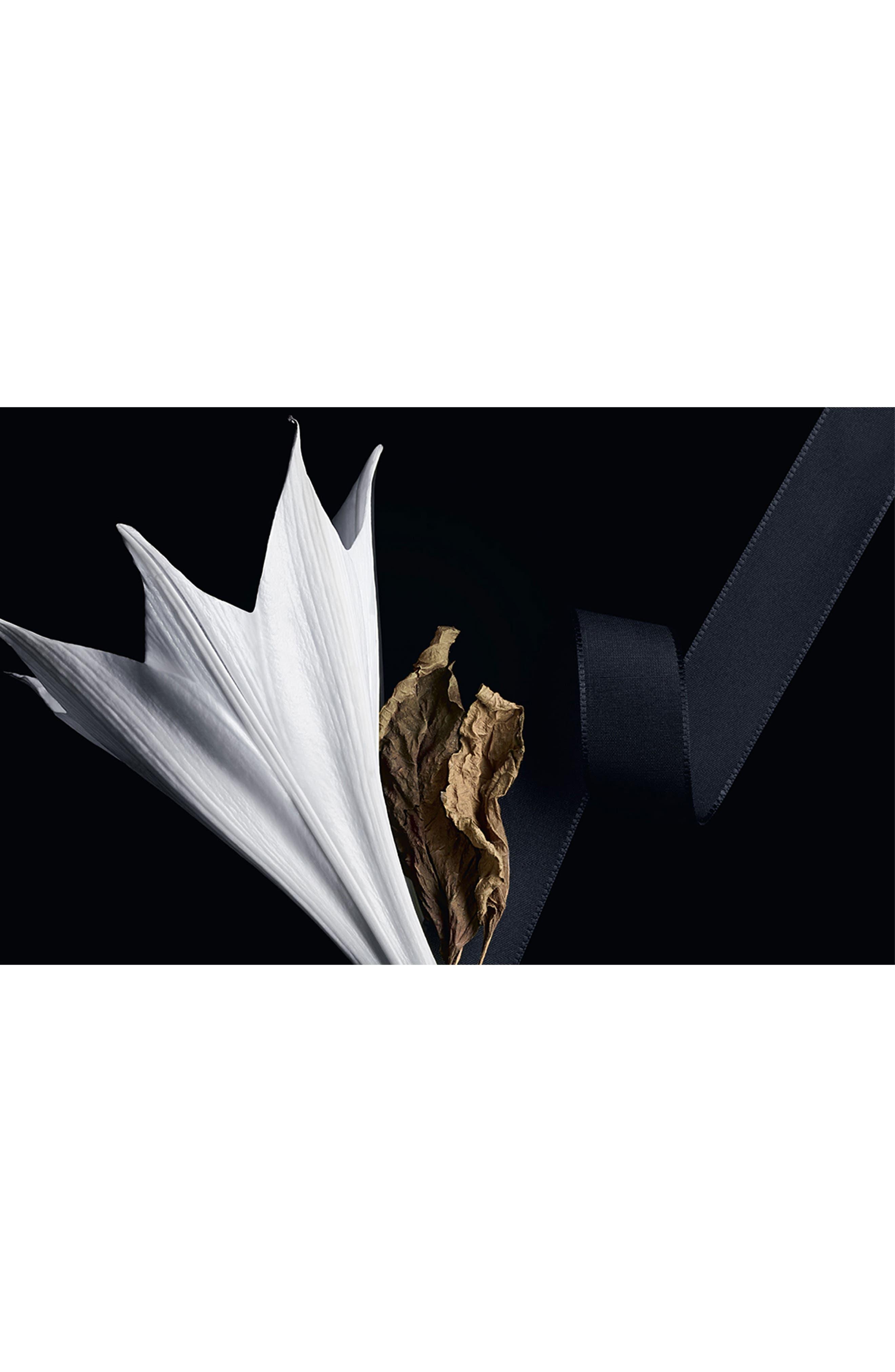 YVES SAINT LAURENT, Mon Paris Eau de Parfum, Alternate thumbnail 3, color, NO COLOR