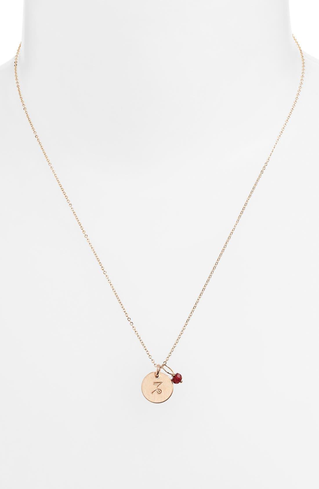NASHELLE, 14k-Gold Fill & Semiprecious Birthstone Zodiac Mini Disc Necklace, Alternate thumbnail 2, color, CAPRICORN