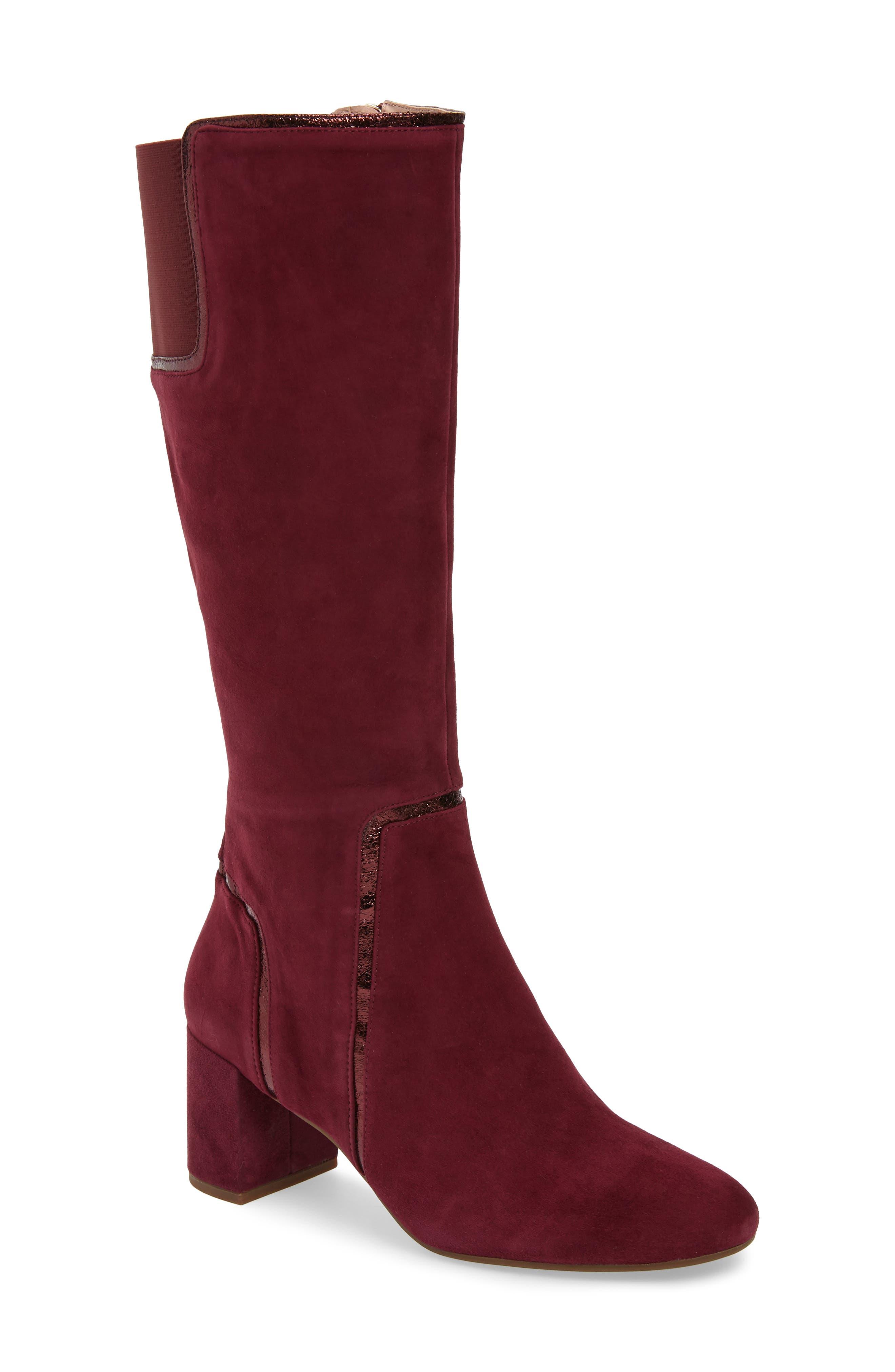 TARYN ROSE Charlee Knee High Boot, Main, color, FIG SUEDE