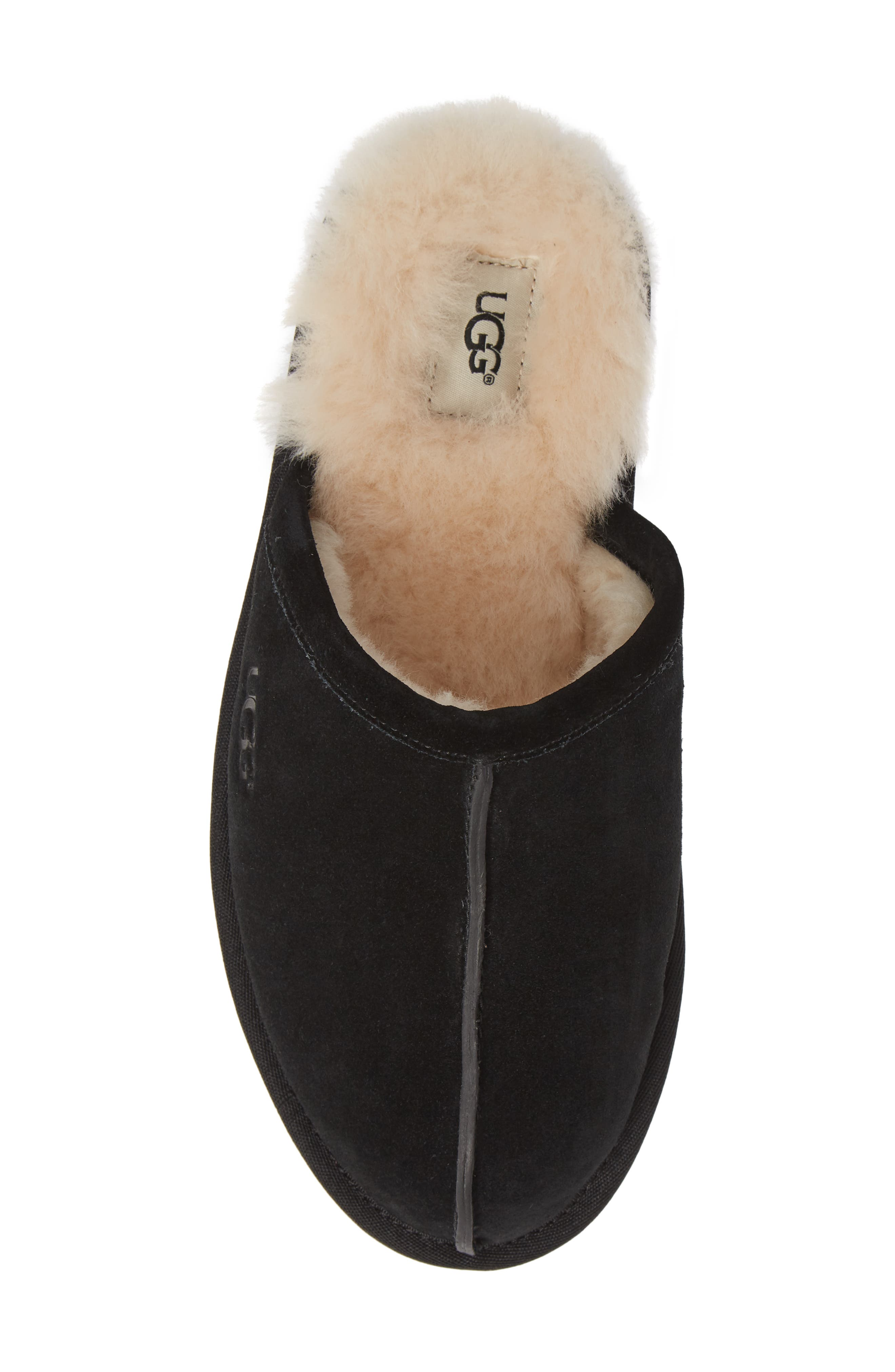 UGG<SUP>®</SUP>, Scuff Slipper, Alternate thumbnail 5, color, BLACK SUEDE
