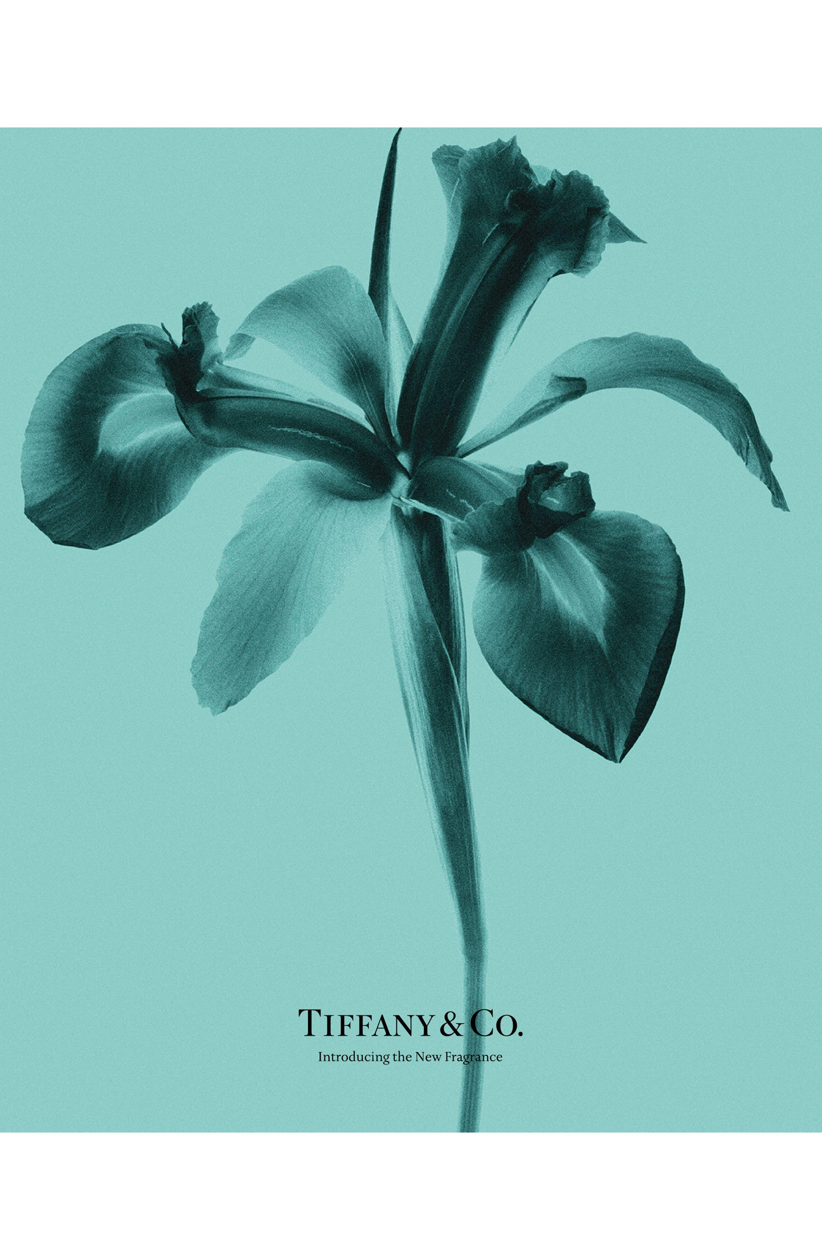 TIFFANY & CO., Tiffany Eau de Parfum, Alternate thumbnail 6, color, NO COLOR