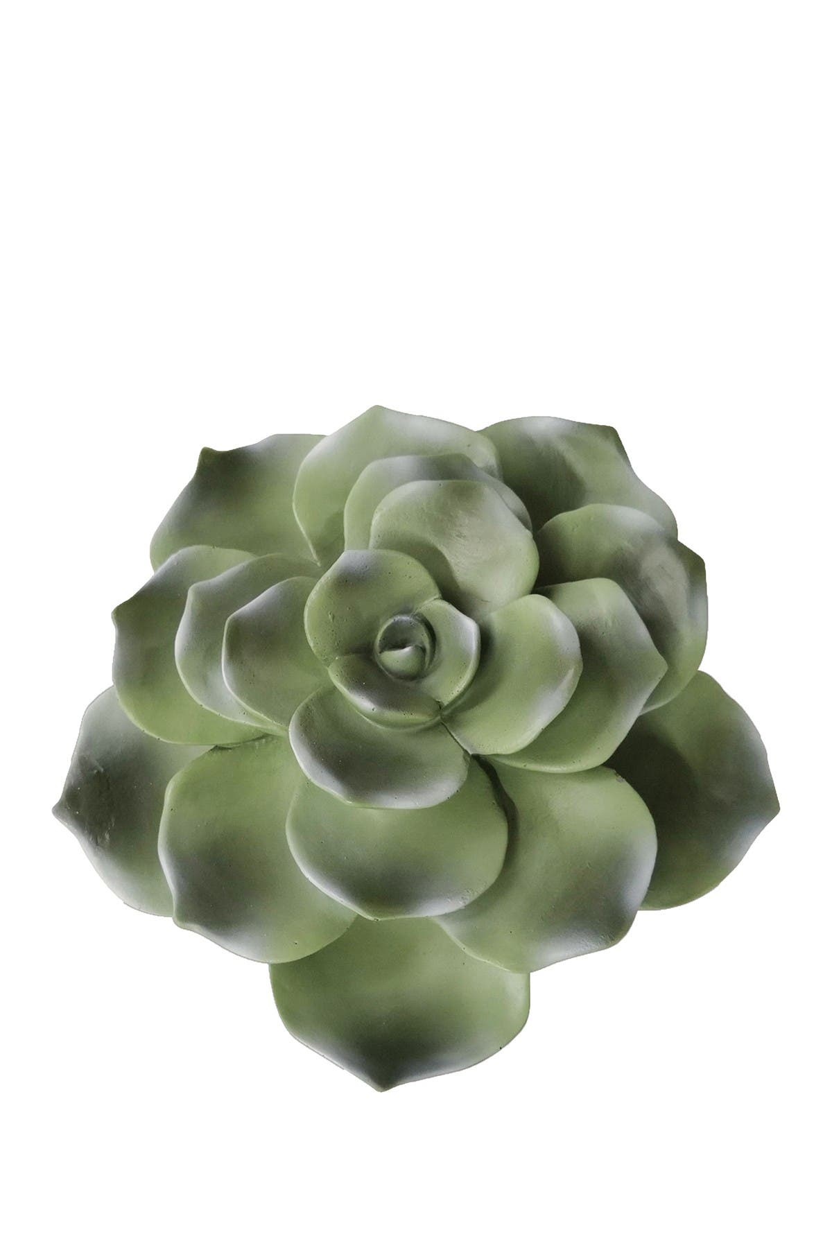 Sagebrook Home Green Polyresin 8 Succulent Wall Decor Nordstrom Rack