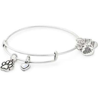 Alex And Ani Charity By Design Paw Print Duo Charm Expandable Wire Bangle