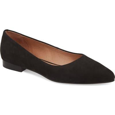Caslon Luna Pointy Toe Flat, Black