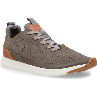 Steve Madden Royale Sneaker, Grey