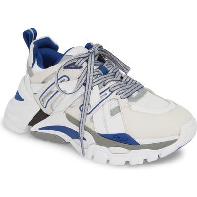Ash Flash Sneaker, Blue