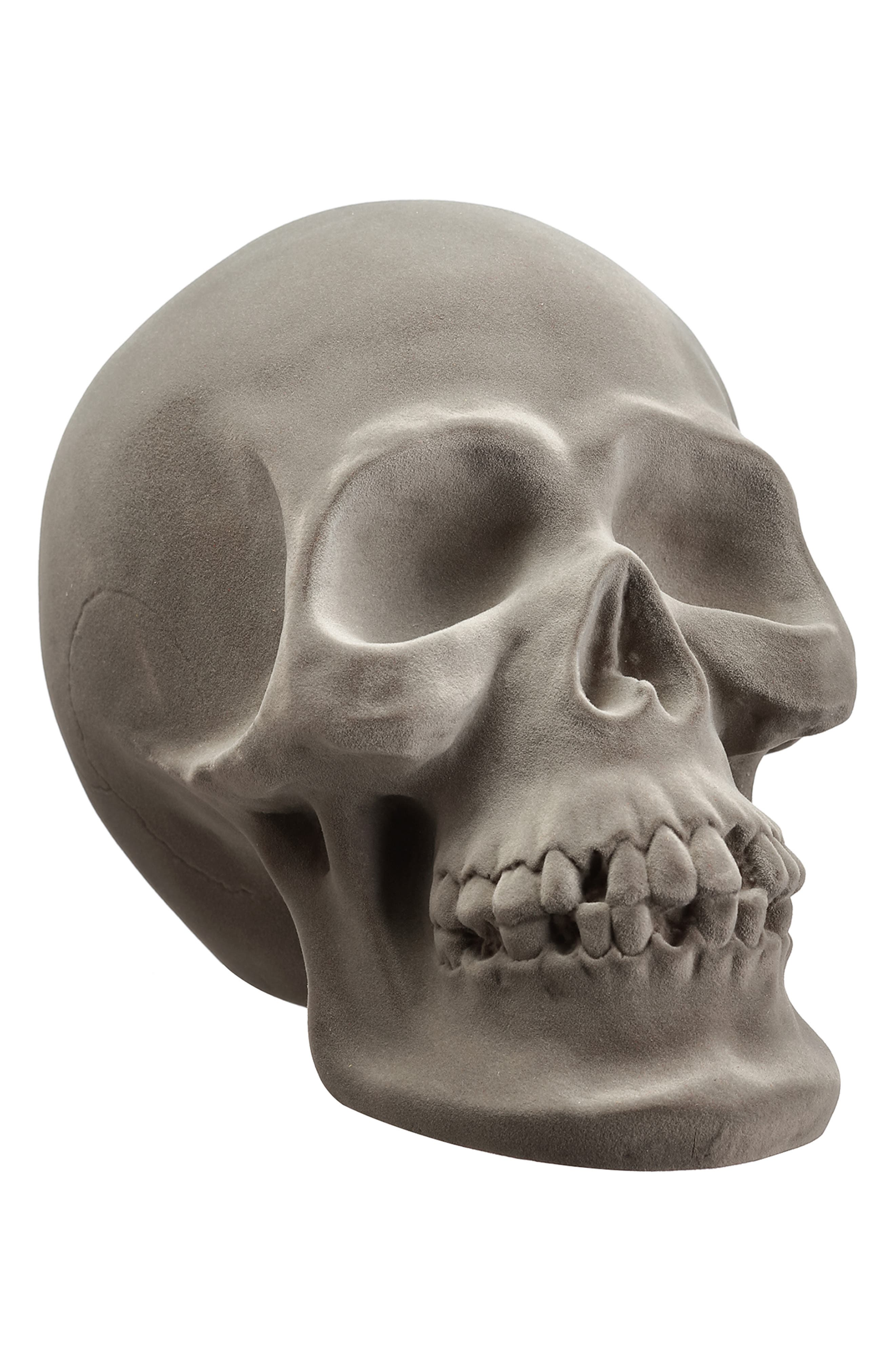 Soft flocking gives a matte, velvety sheen to this decorative skull complete with a few missing teeth and cracks along the back for a realistic, spooky look. Style Name: Allstate Decorative Skull. Style Number: 6082309. Available in stores.