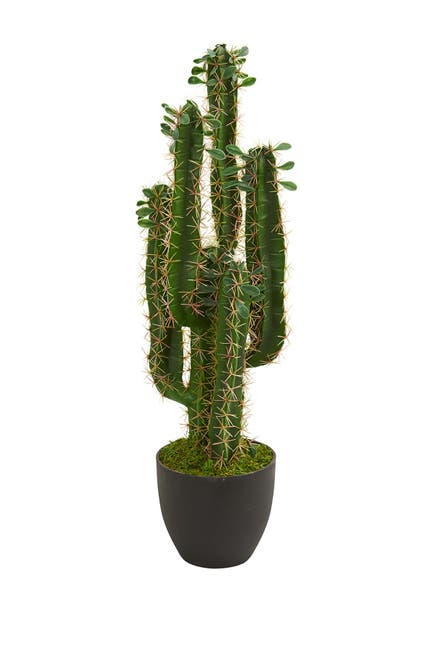 Image of NEARLY NATURAL 2.5ft. Cactus Artificial Plant
