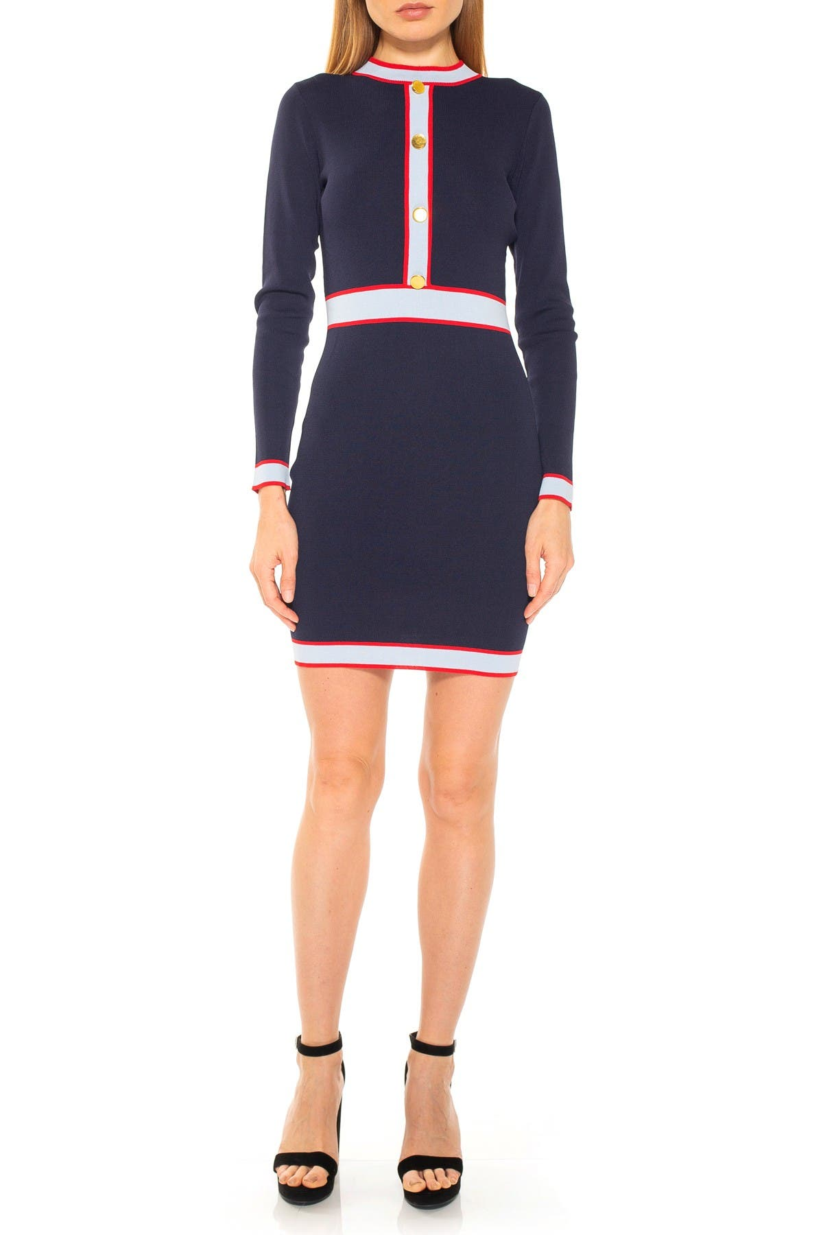 Image of Alexia Admor Betty Long Sleeve Colorblock Knit Dress