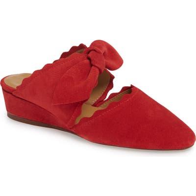 Klub Nico Daisy Mule, Red