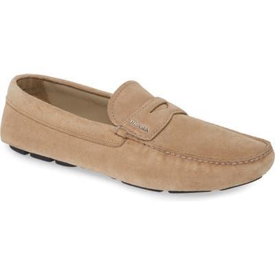Prada Driving Shoe, Brown
