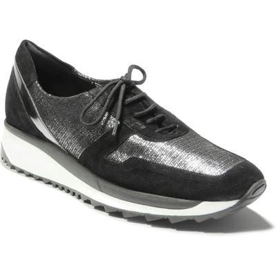 Sesto Meucci Chitty Sneaker, Brown