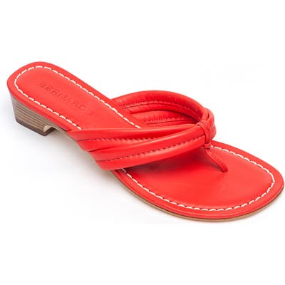 Bernardo Miami Sandal- Red