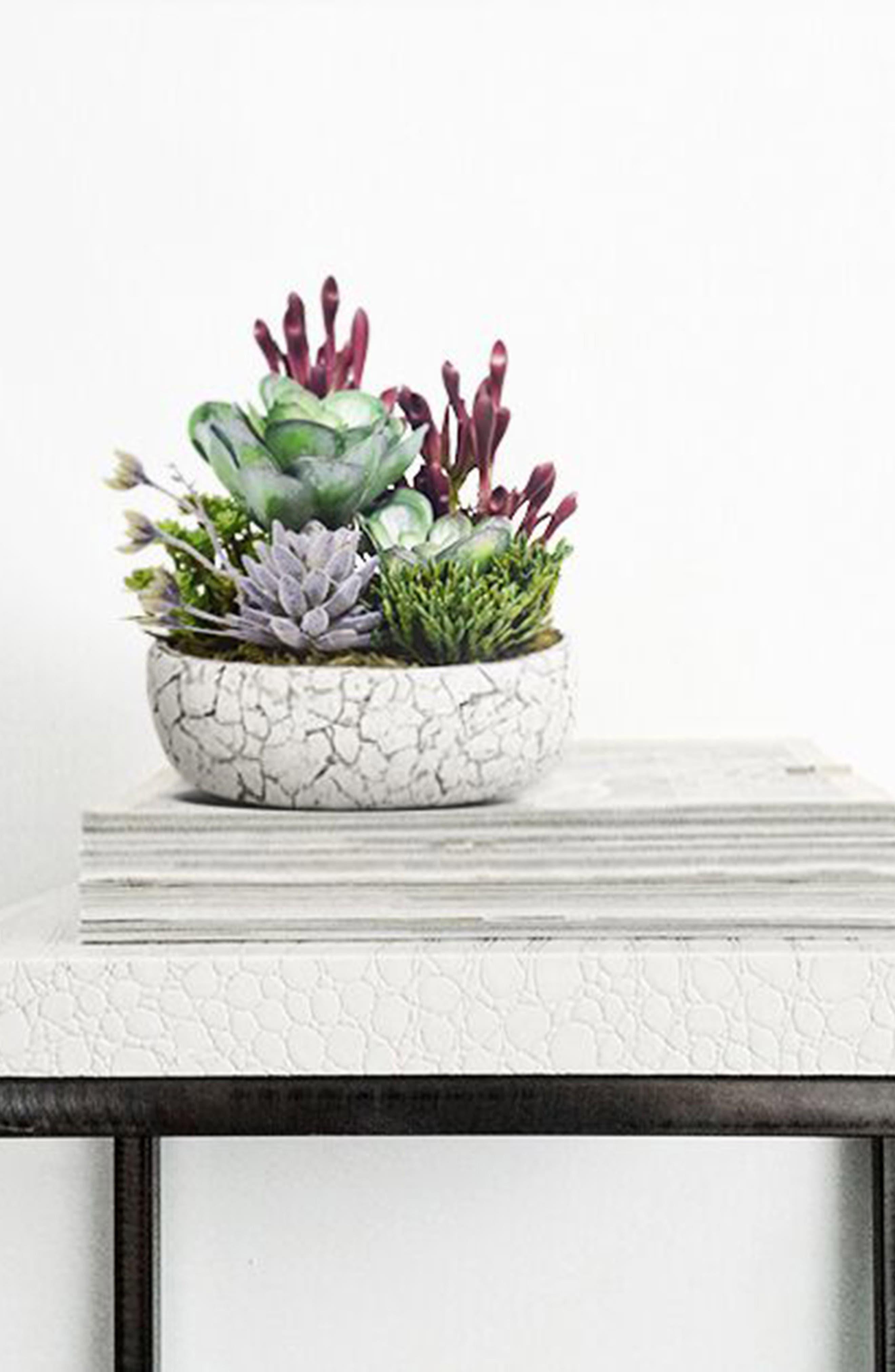 ,                             Rustic Succulent Arrangement Planter Decoration,                             Alternate thumbnail 3, color,                             GREEN