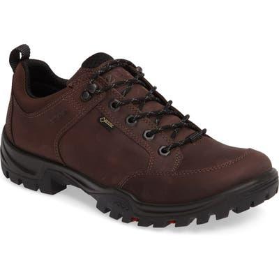 Ecco Biom Hike 1.1 Hiking Shoe - Brown