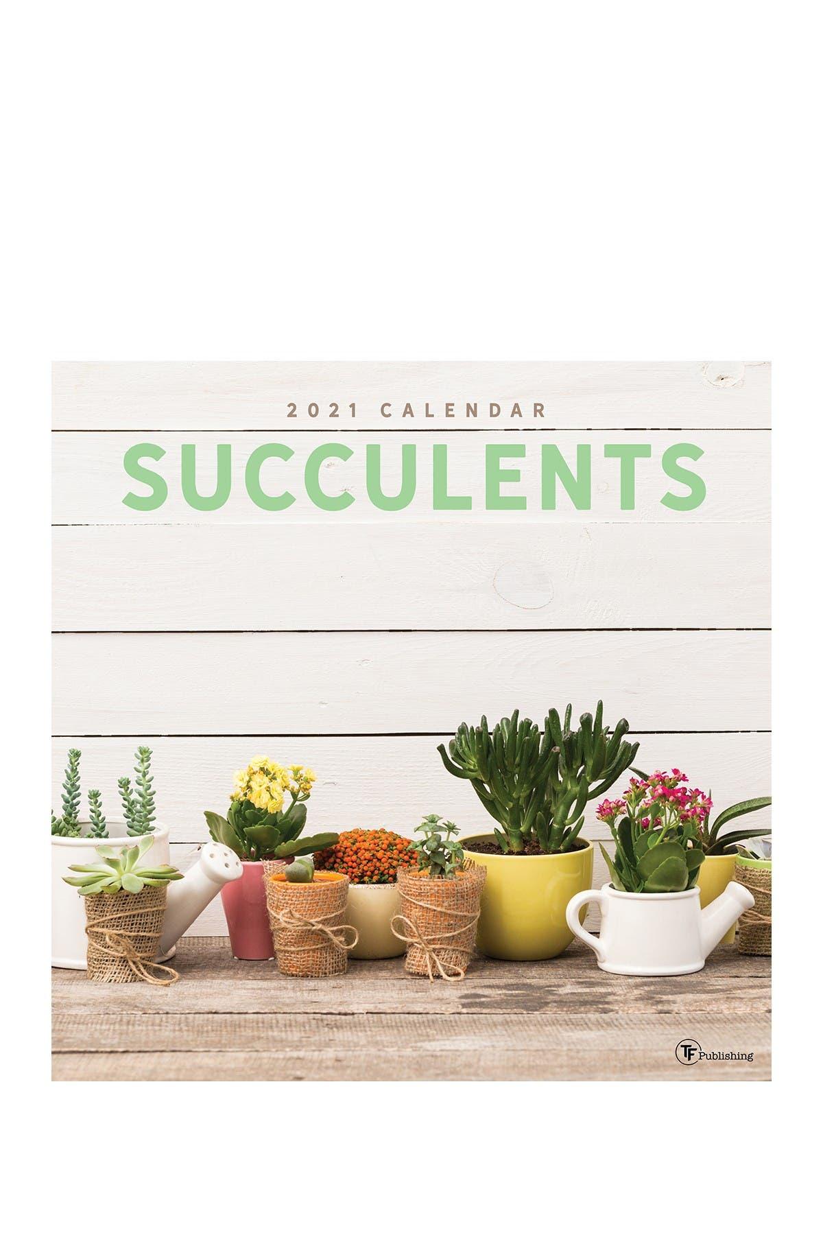 Image of TF Publishing 2021 Succulents Wall Calendar