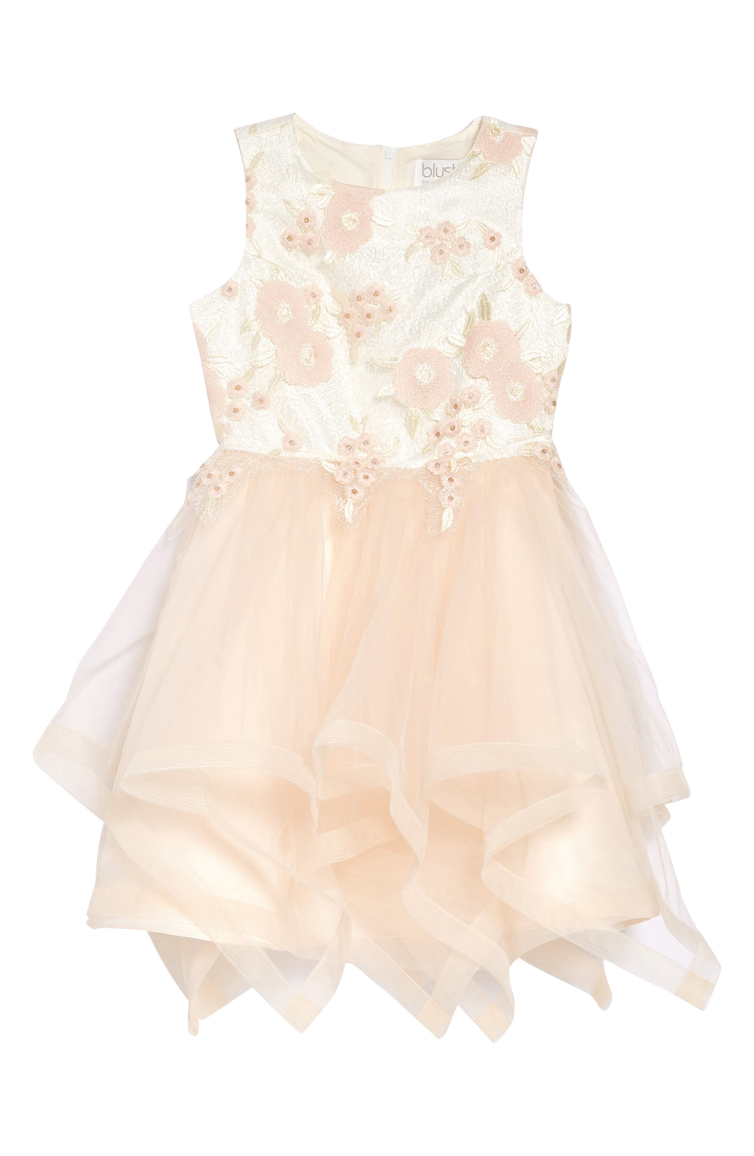 Image of Blush by Us Angels Embroidered Mesh Dress