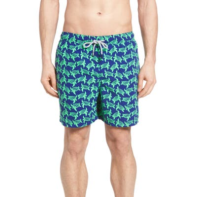 Tom & Teddy Turtle Print Swim Trunks