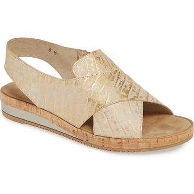 Sesto Meucci Sylke Sandal- Metallic
