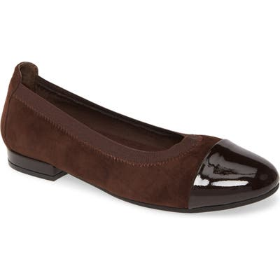 David Tate Nicole Cap Toe Flat, WW - Brown